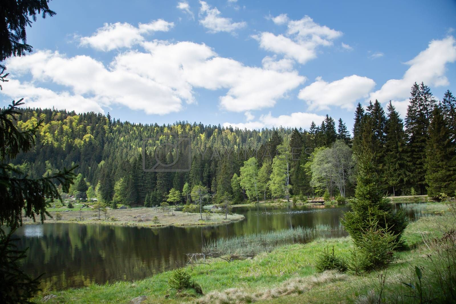 Landscape at the small Arbersee in Bavaria by Sandra Fotodesign