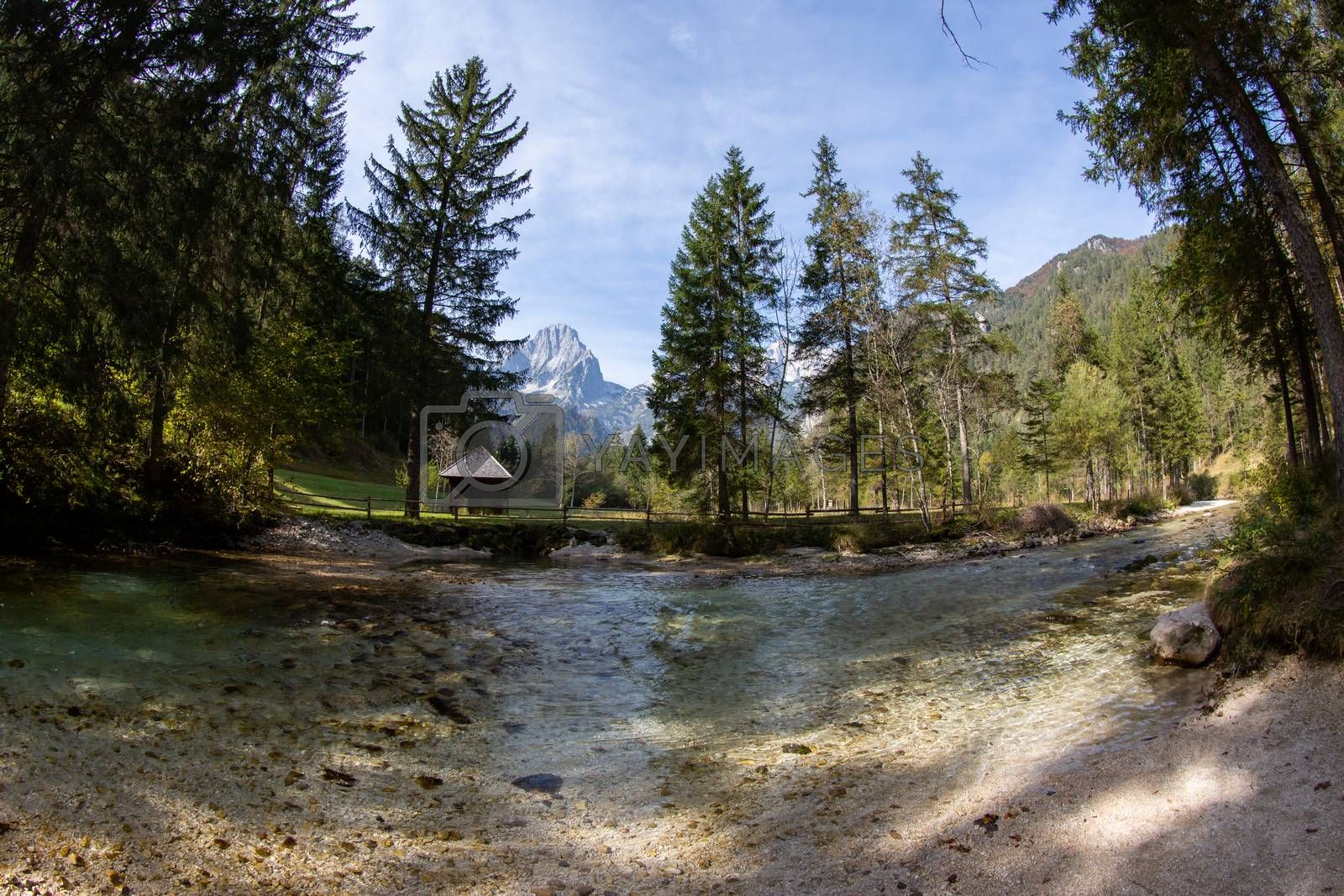 A beautiful clear river in Austria by Sandra Fotodesign