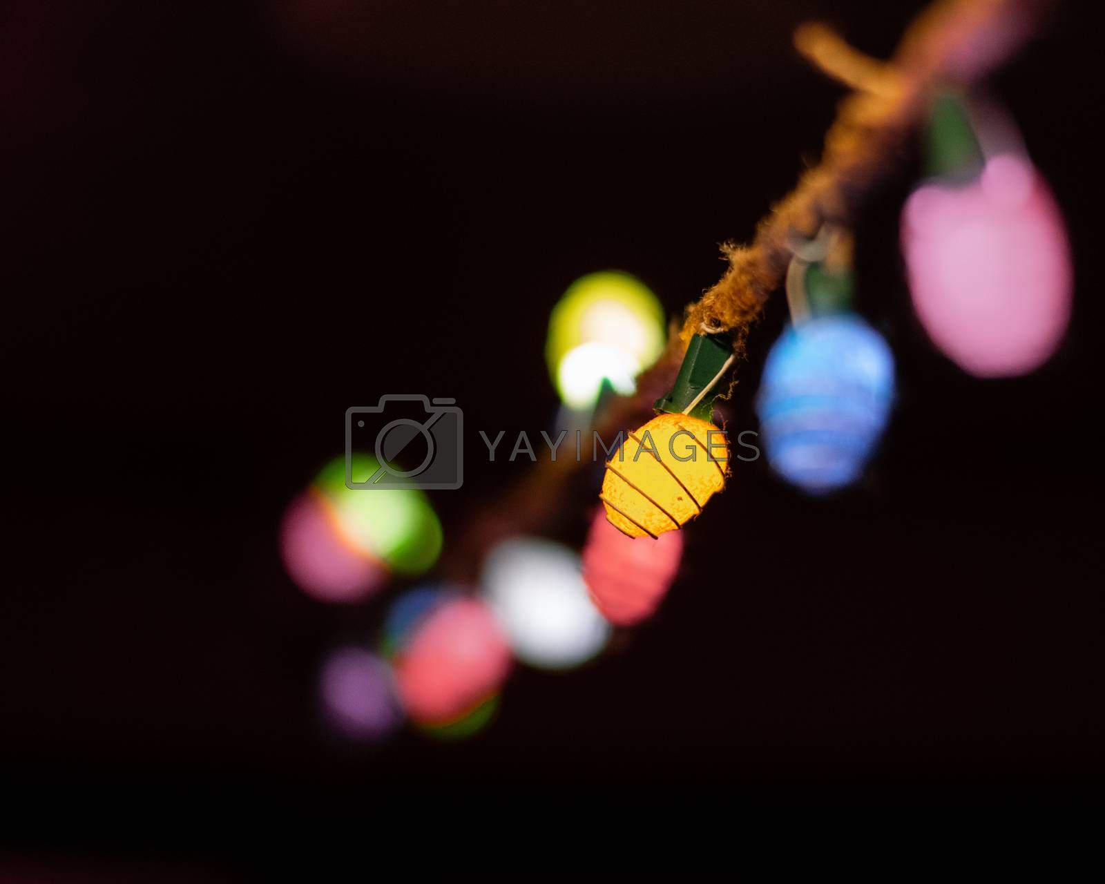 String Lights on Rope by benwehrman