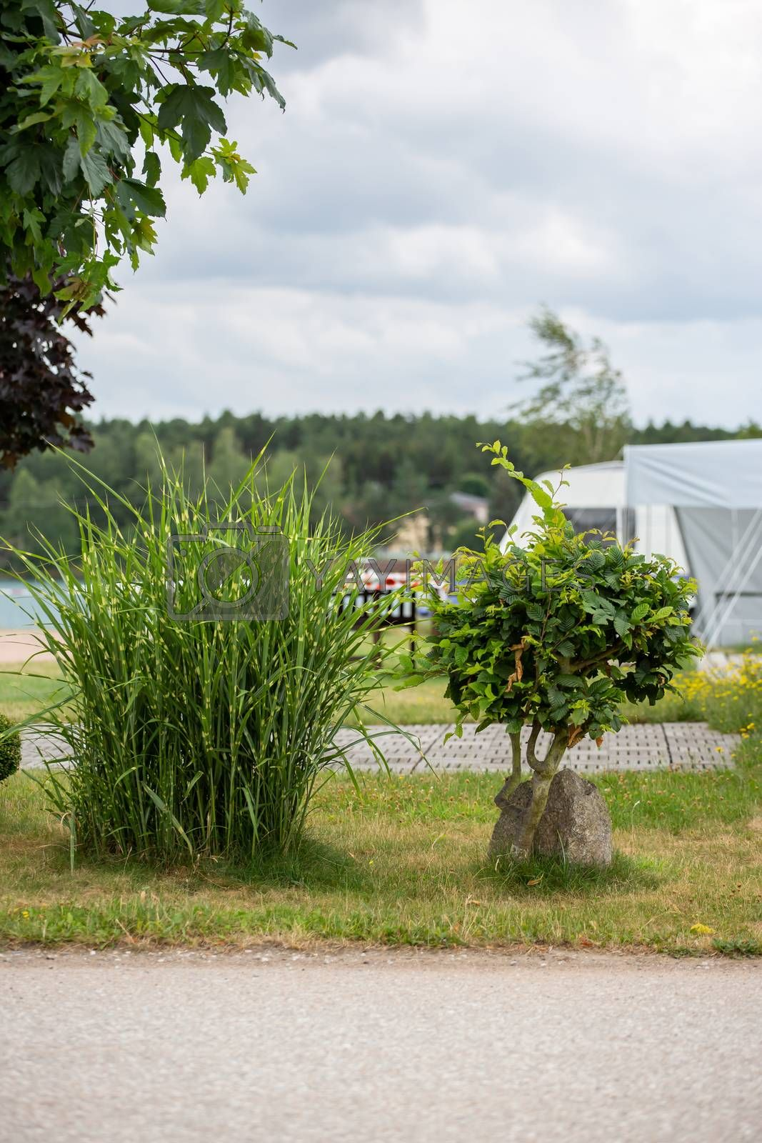 Impressions on a campsite on a sunny day by Sandra Fotodesign