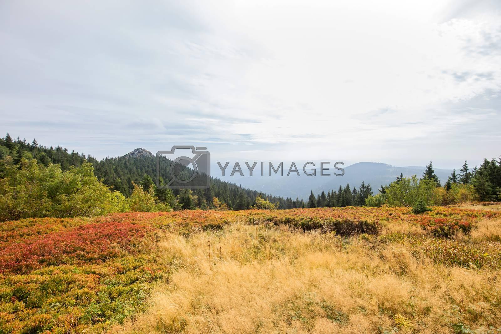 Landscape picture at the big Arber in Bavaria by Sandra Fotodesign