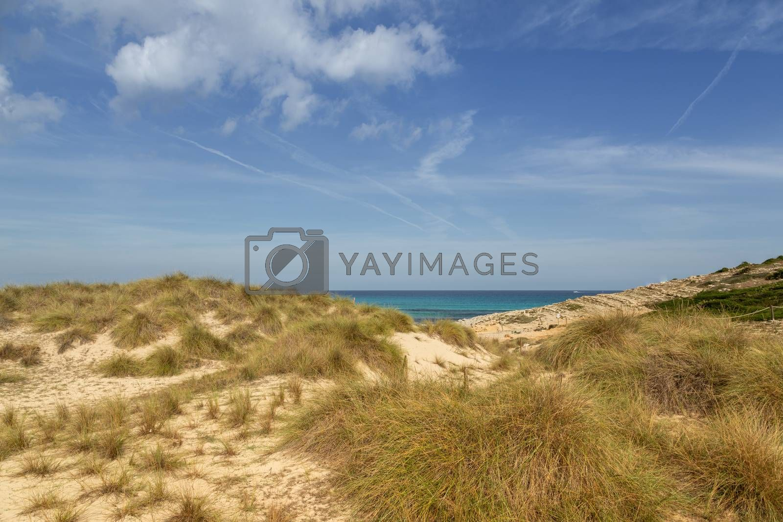 Wonderful dune landscape Cala Mesquida Mallorca Spain by Sandra Fotodesign