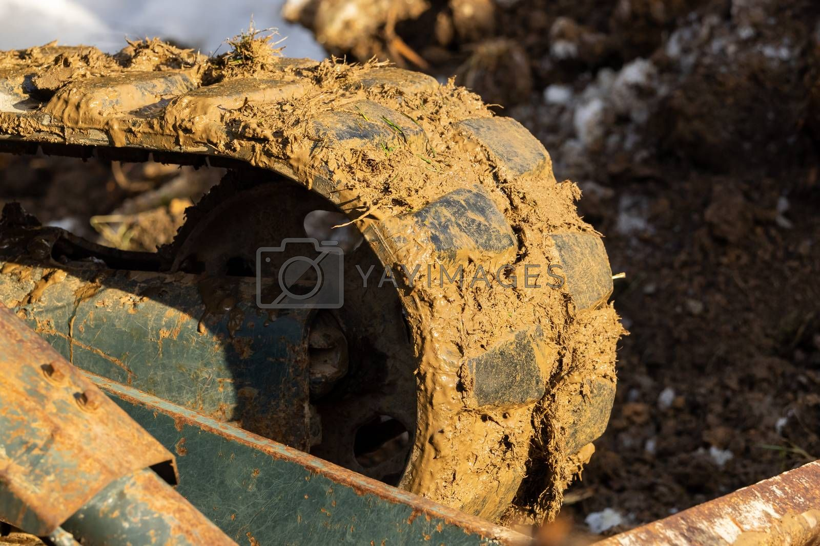An excavator works in the garden, removing a root by Sandra Fotodesign
