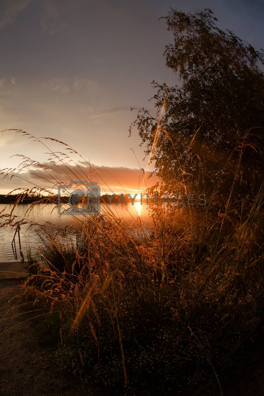 Landscape at the Murner lake, Wackersdorf, Bavaria by Sandra Fotodesign