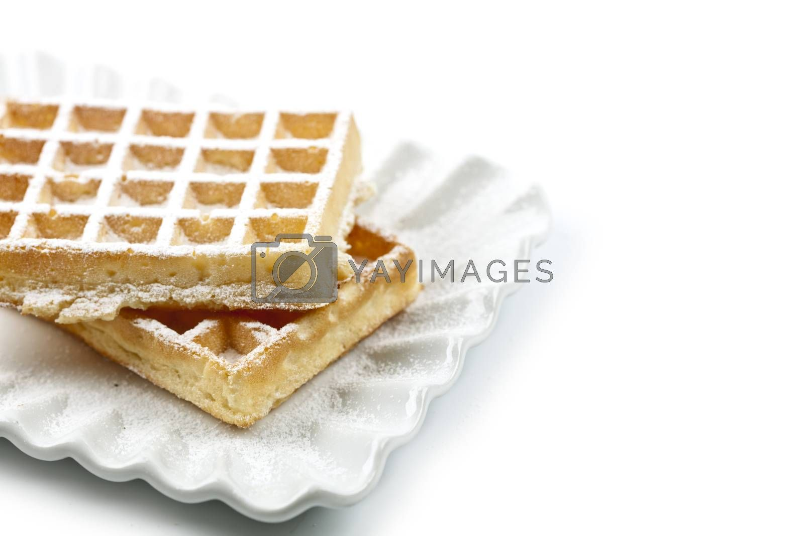 Belgium waffers with sugar powder on ceramic plate isolated on w by marylooo