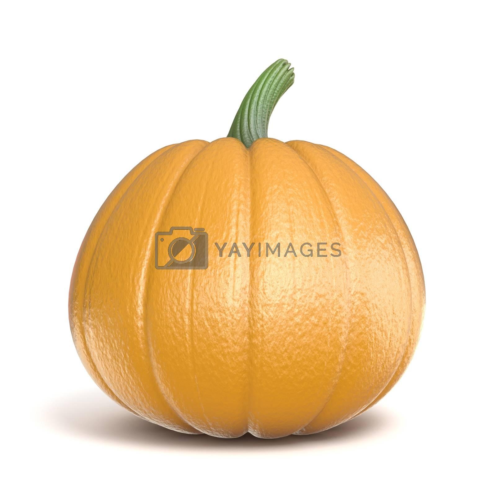 Pumpkin 3D render illustration by djmilic