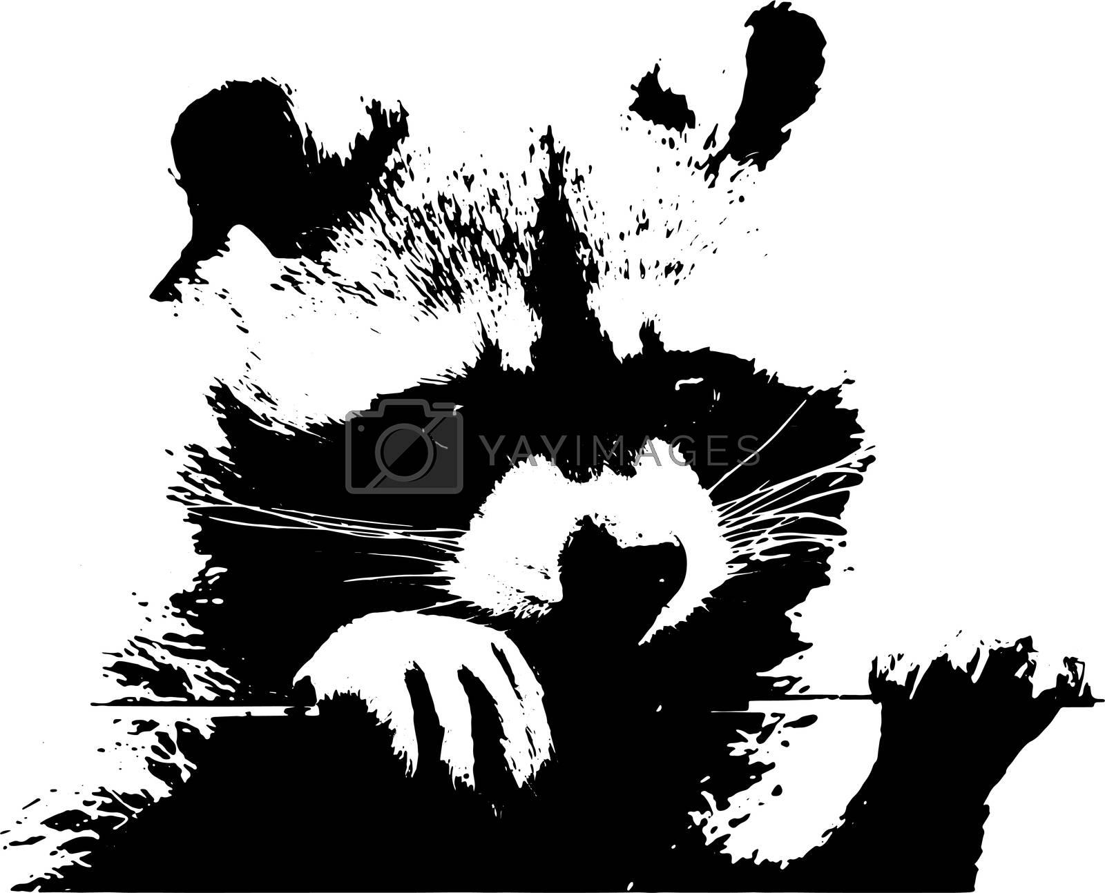 A sweet little racoon - Illustration