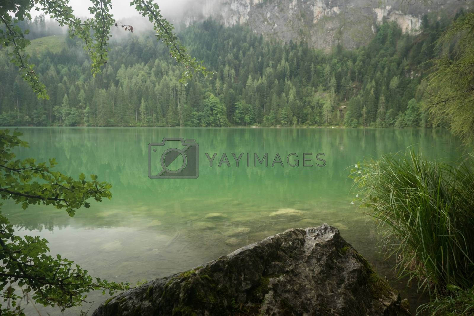 Nature lake shot at the Gleinkersee in Austria