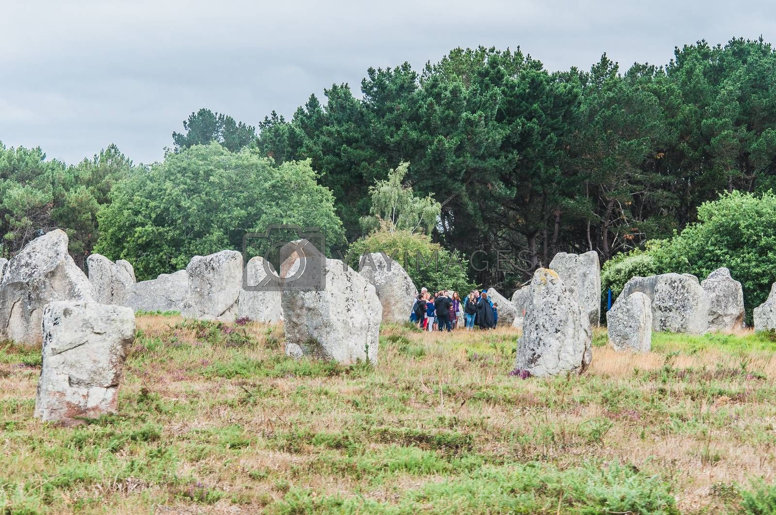 Menhir fields in Carnac dnas the morbihan in brittany, France by raphtong