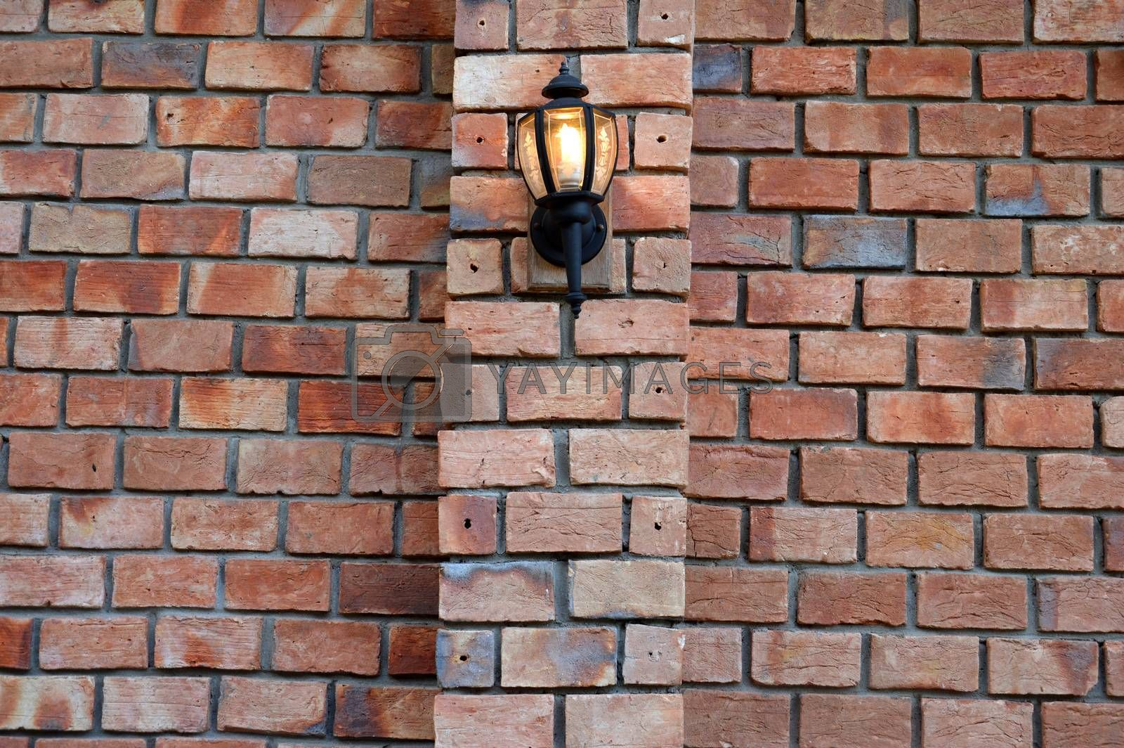 decorative lights by antonihalim
