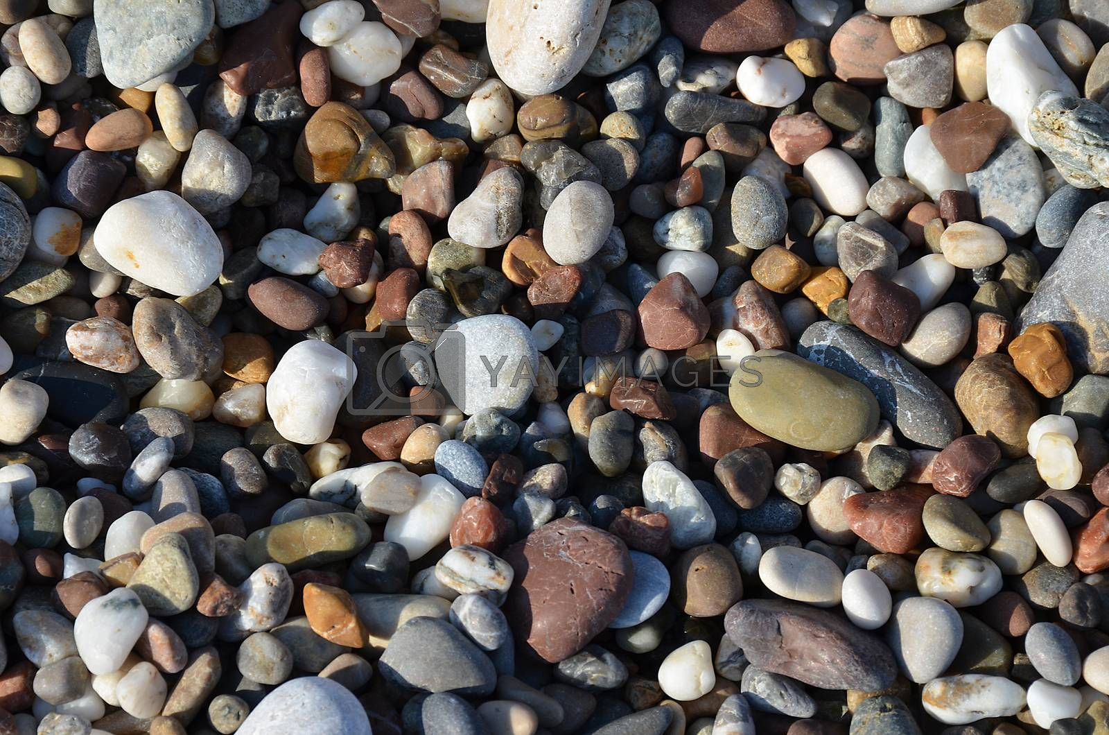 Detail of the various sea pebbles stones by jordano
