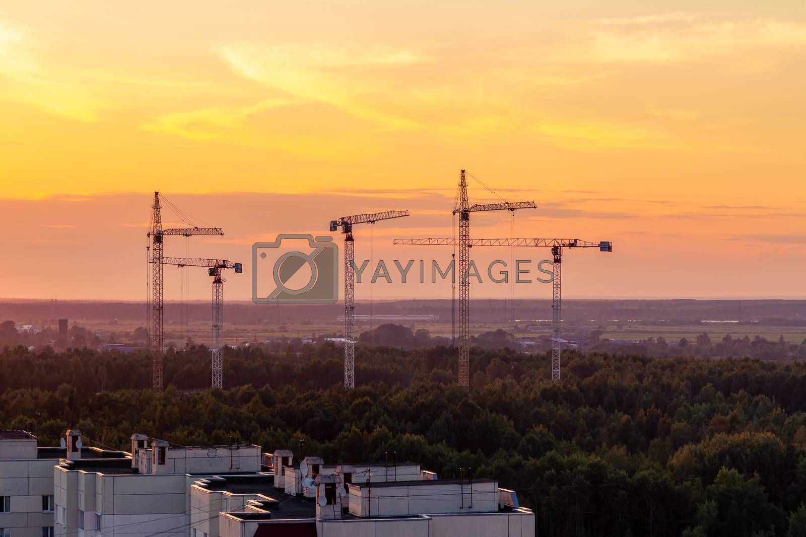 Several construction cranes on the background of colorful sunset sky by galsand