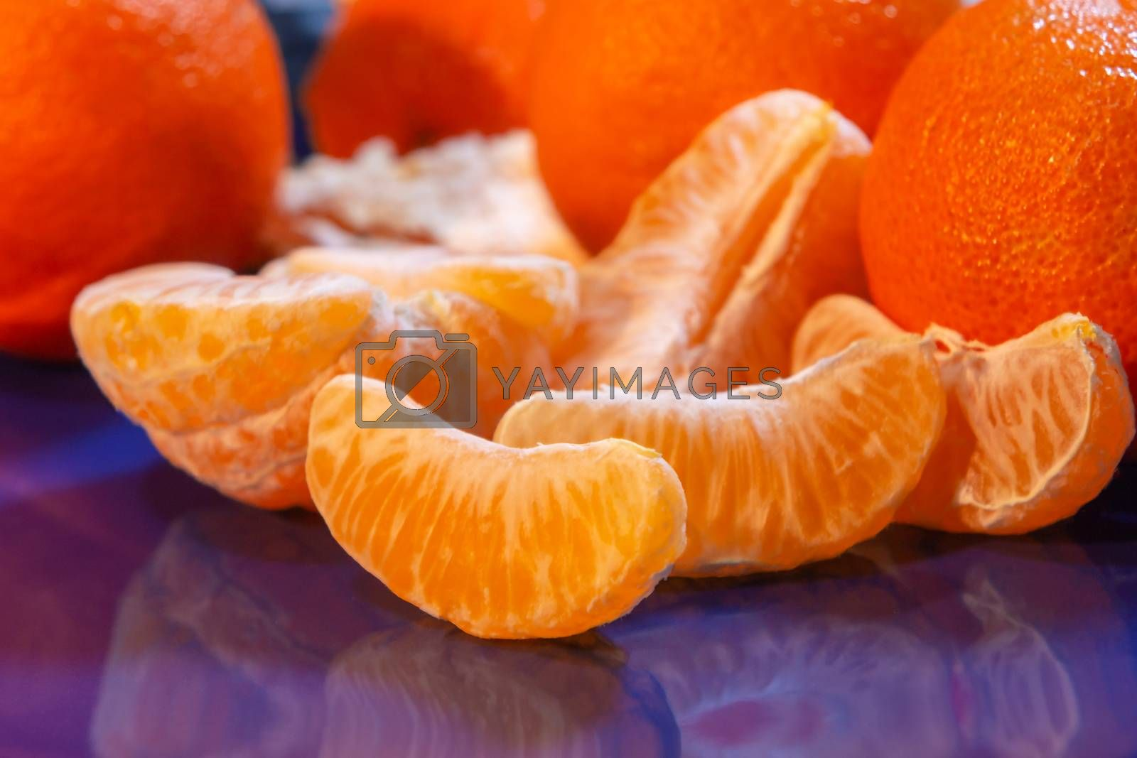 Several whole and peeled ripe tangerines on a blue plate by galsand