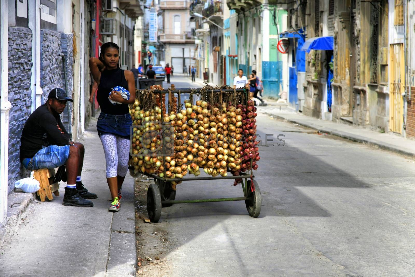Selling onions on the street in Old Havana, Cuba by friday
