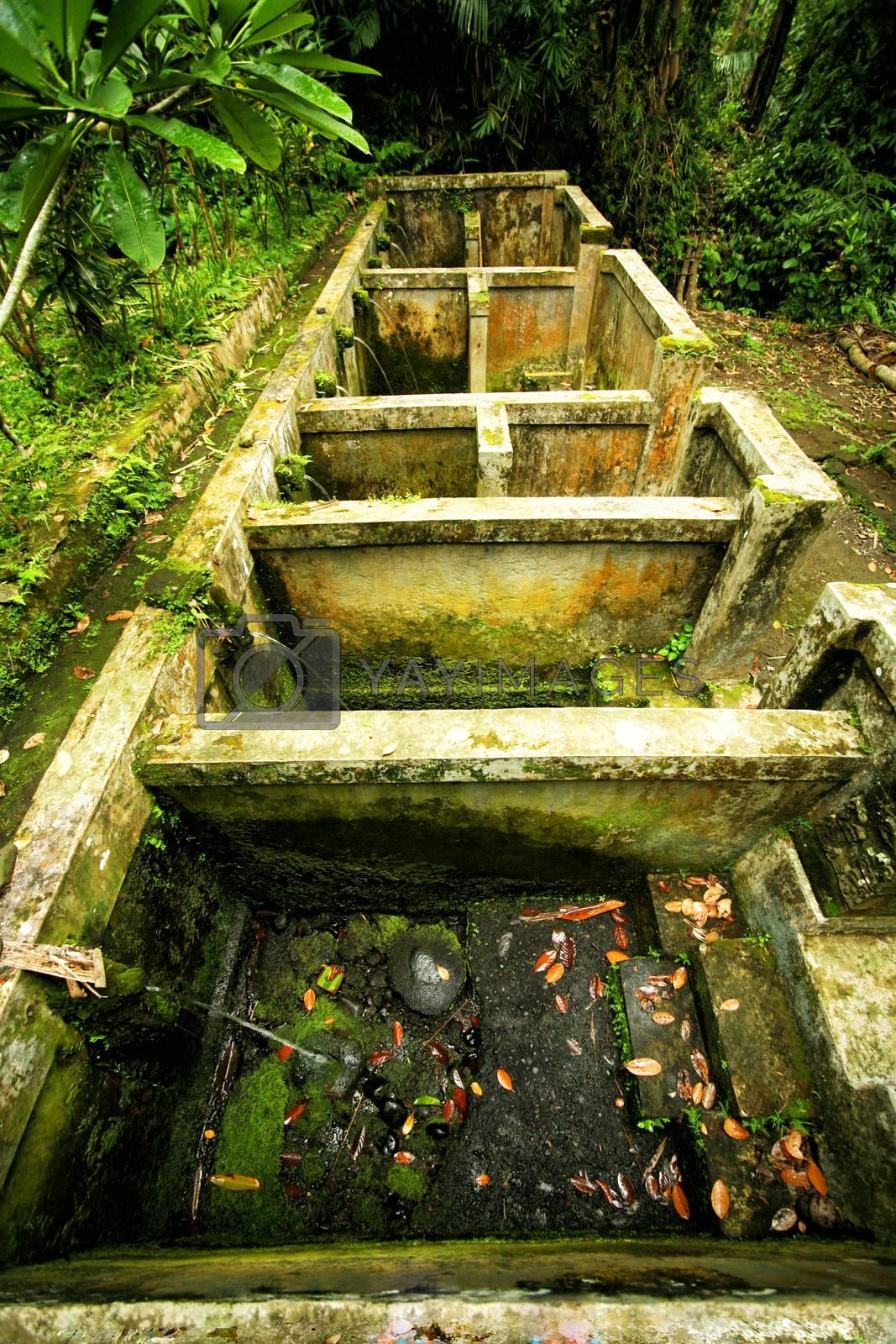 Traditional Indonesian bath in Ubud, Bali. Indonesia