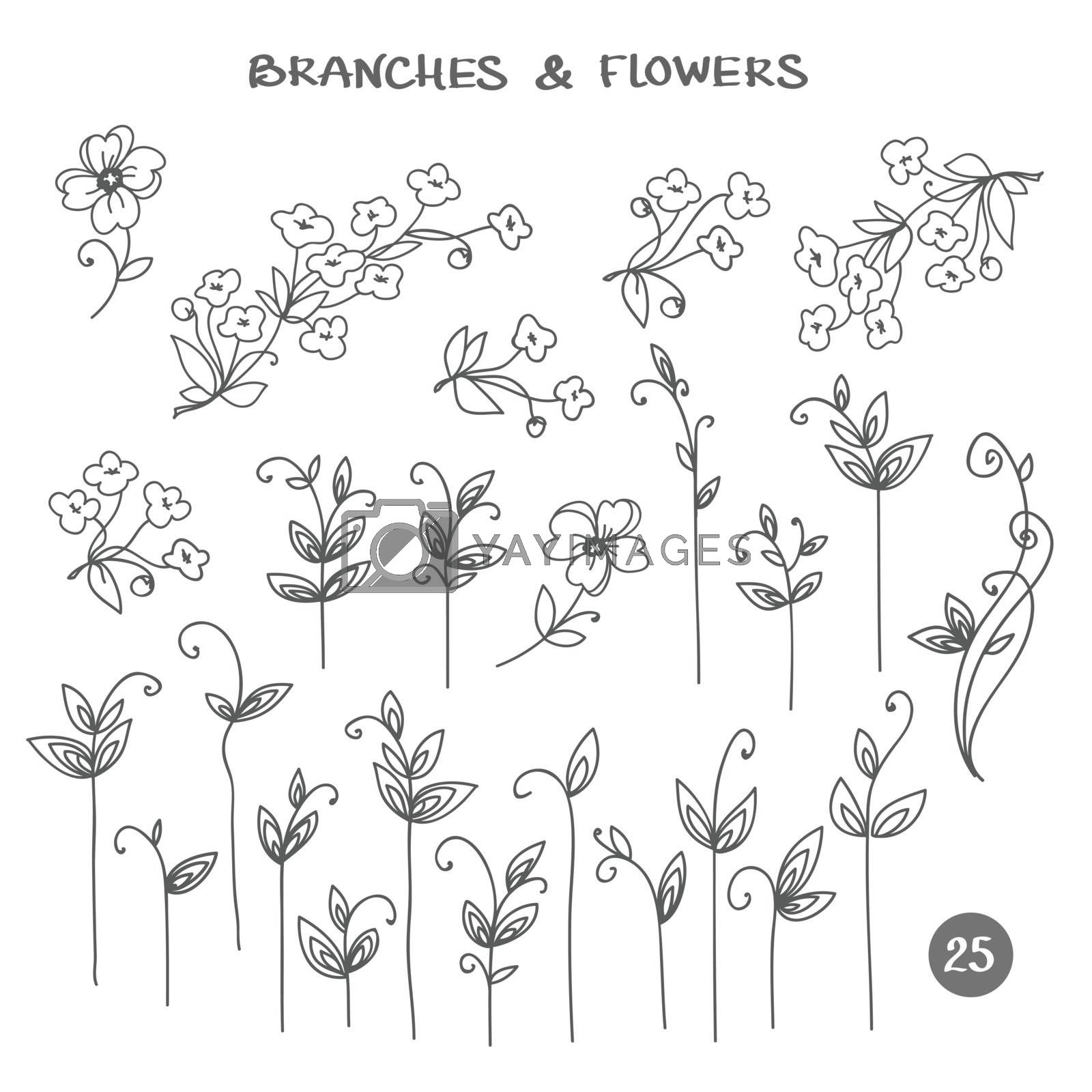 Set of branches. Hand drawn black ink isolated floral decorative elements. Herb silhouette collection by ESSL