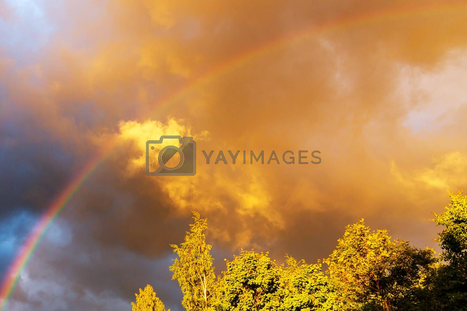 Rainbow after rain in a cloudy sky among dramatic clouds by galsand