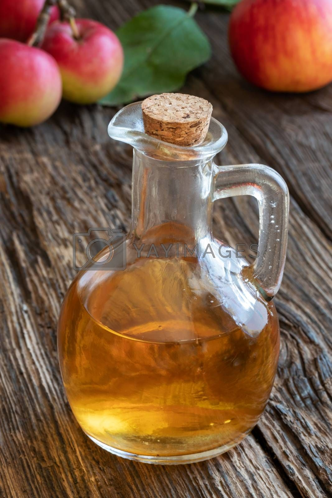 A bottle of apple cider vinegar with fresh apples by Madeleine Steinbach