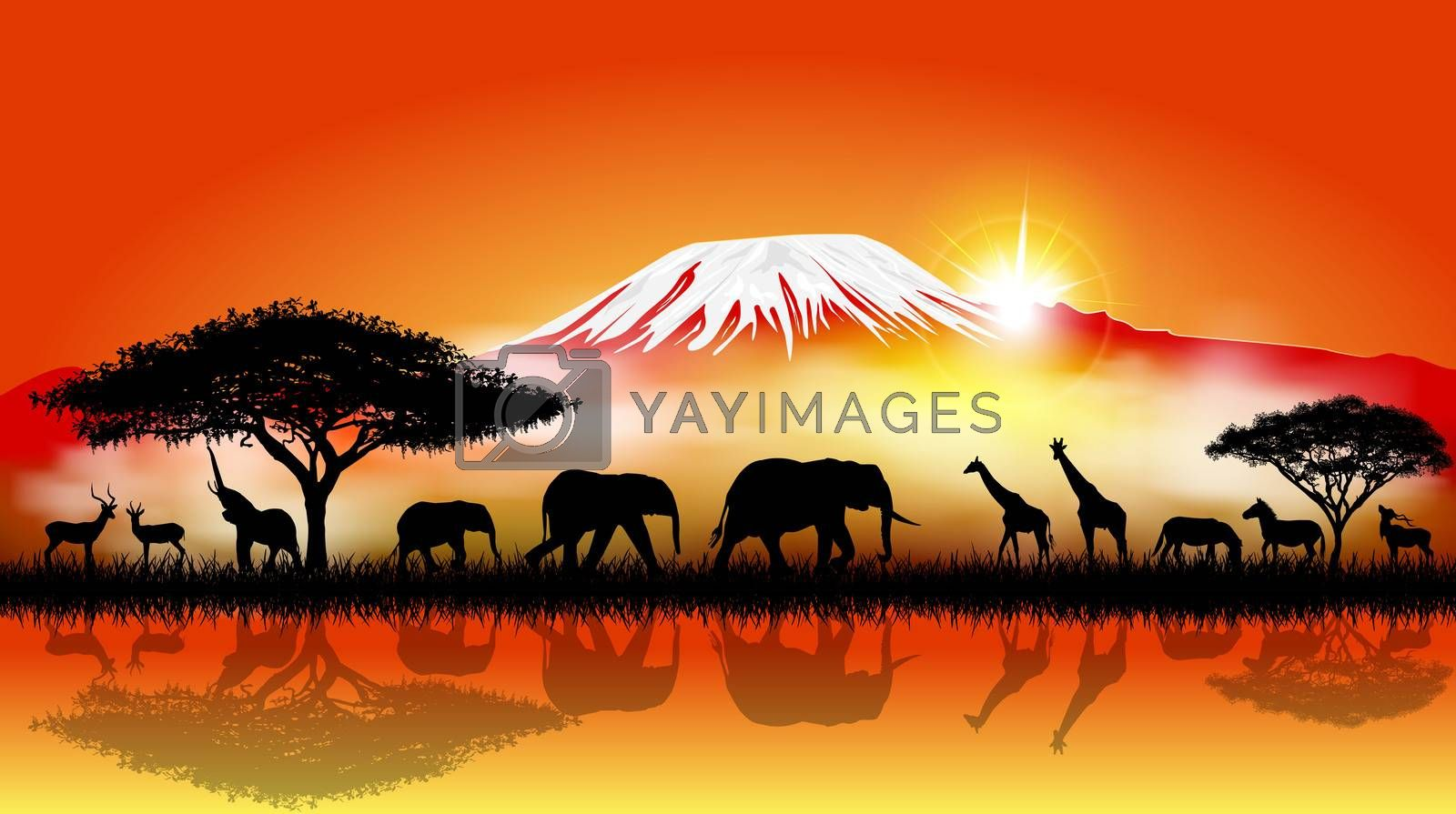 Silhouettes of wild animals of the African savanna.