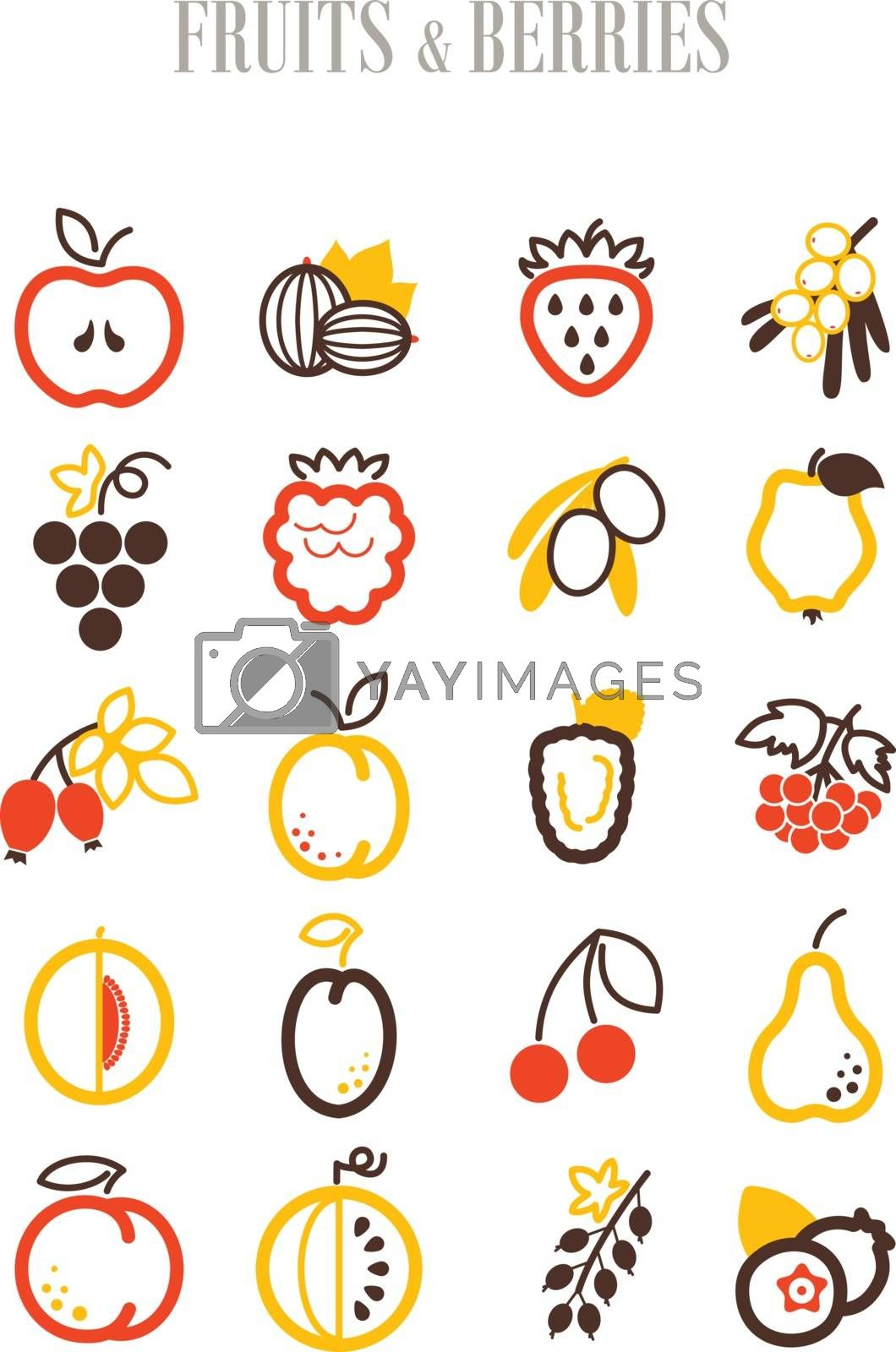 Set of Fruits and Berries icons set by nosik