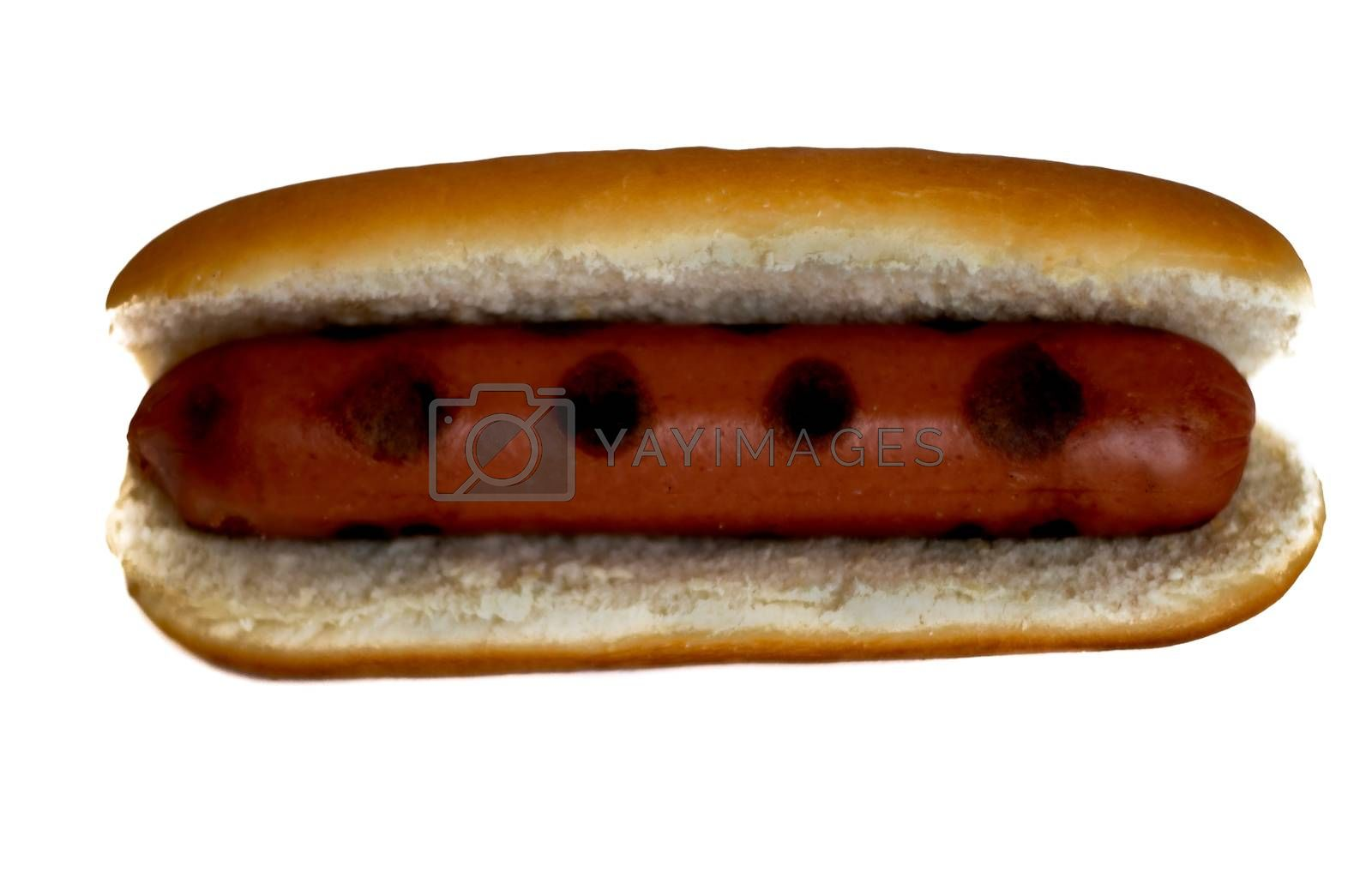 Hot dog on the grill isolated on white background