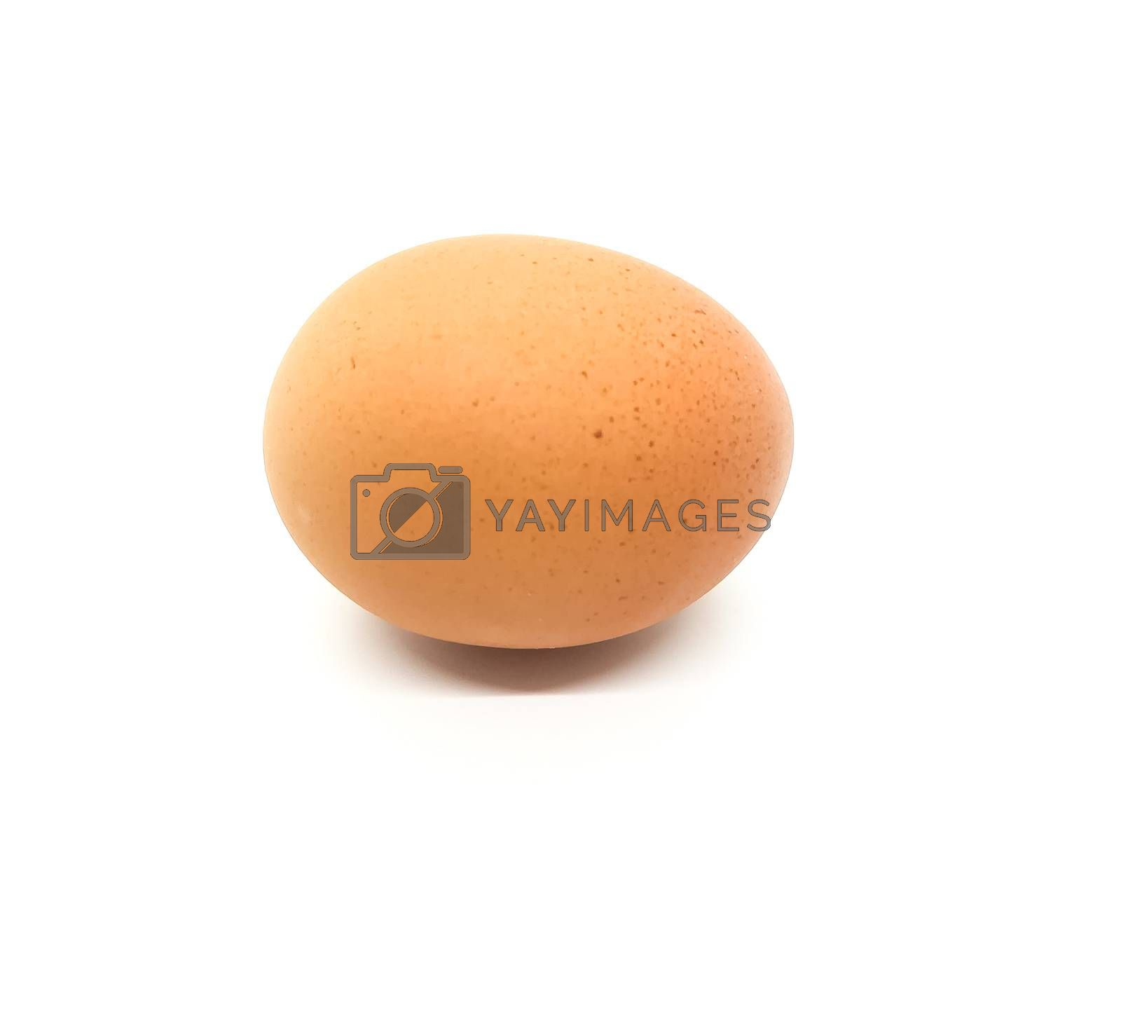 Brown egg with black specks on white background
