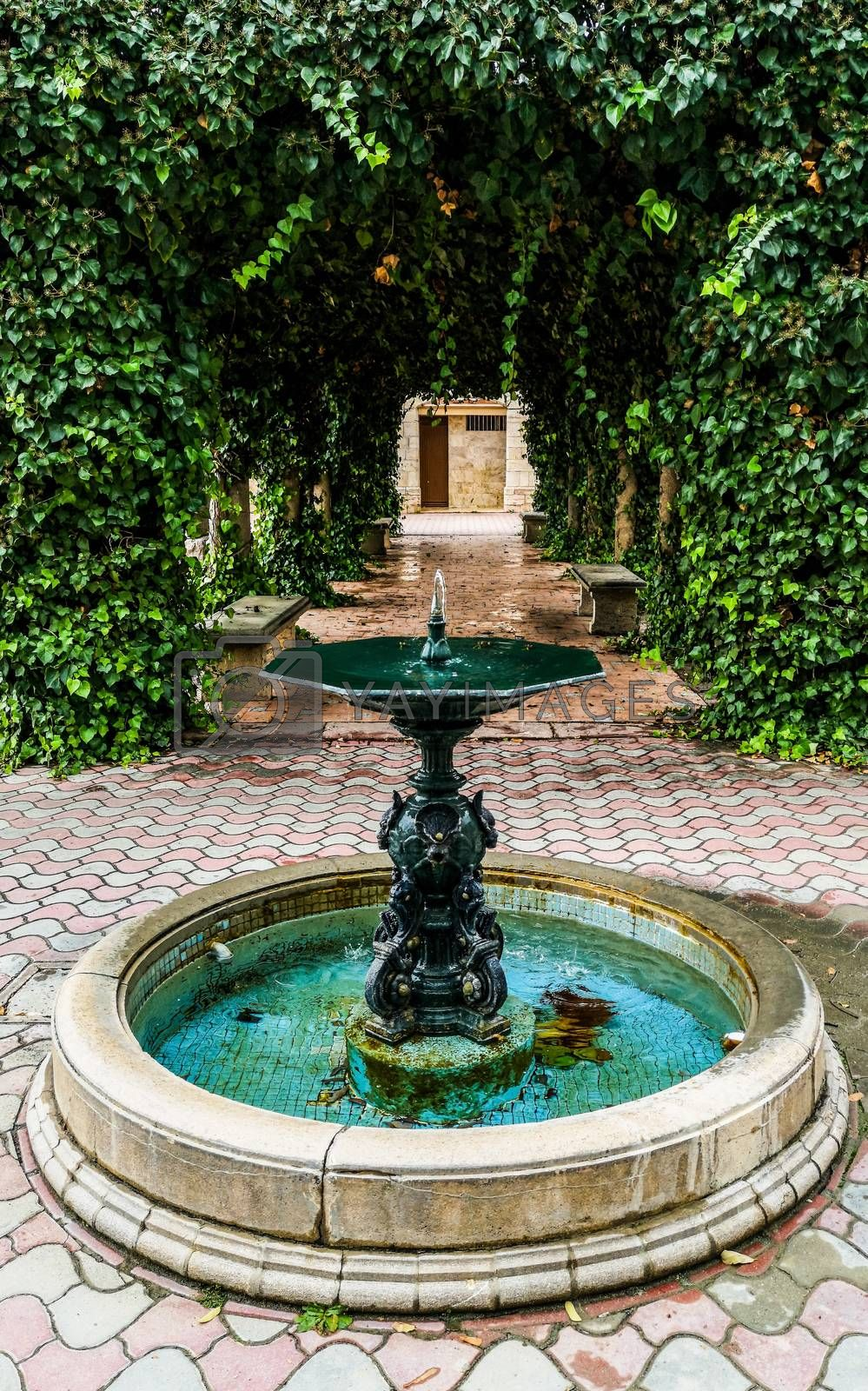 Ancient fountain with a structure covered with plants by Barriolo82