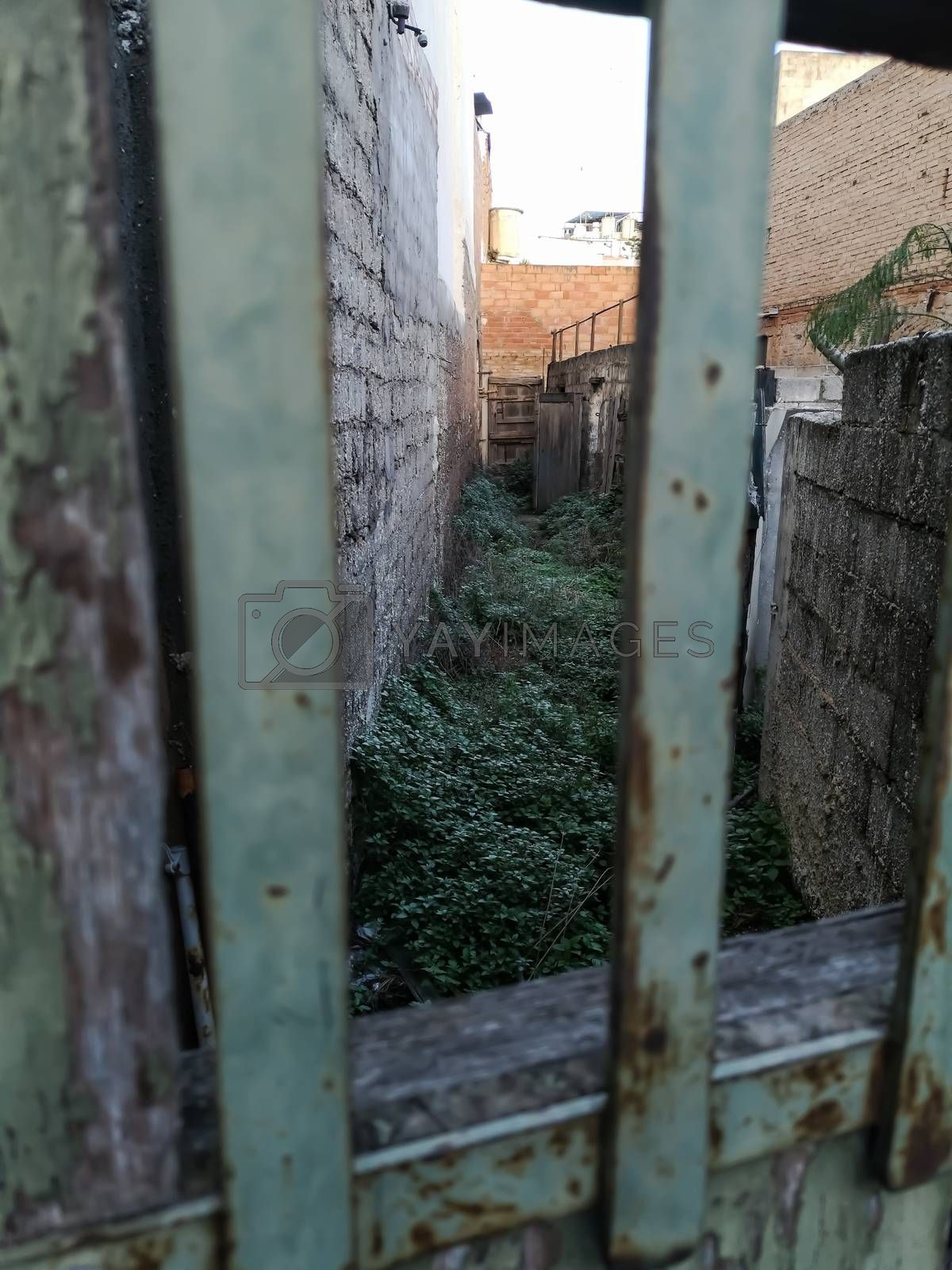 Alley hidden behind a door with a window with gates