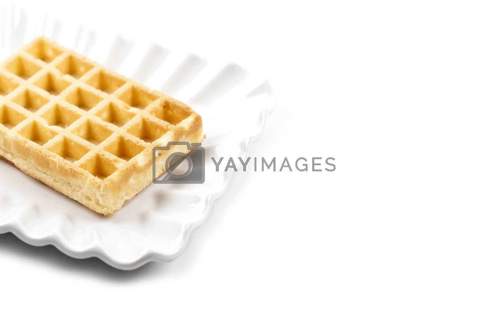 Belgium waffer on white ceramic plate isolated on white background. Fresh baked wafer with copy space.