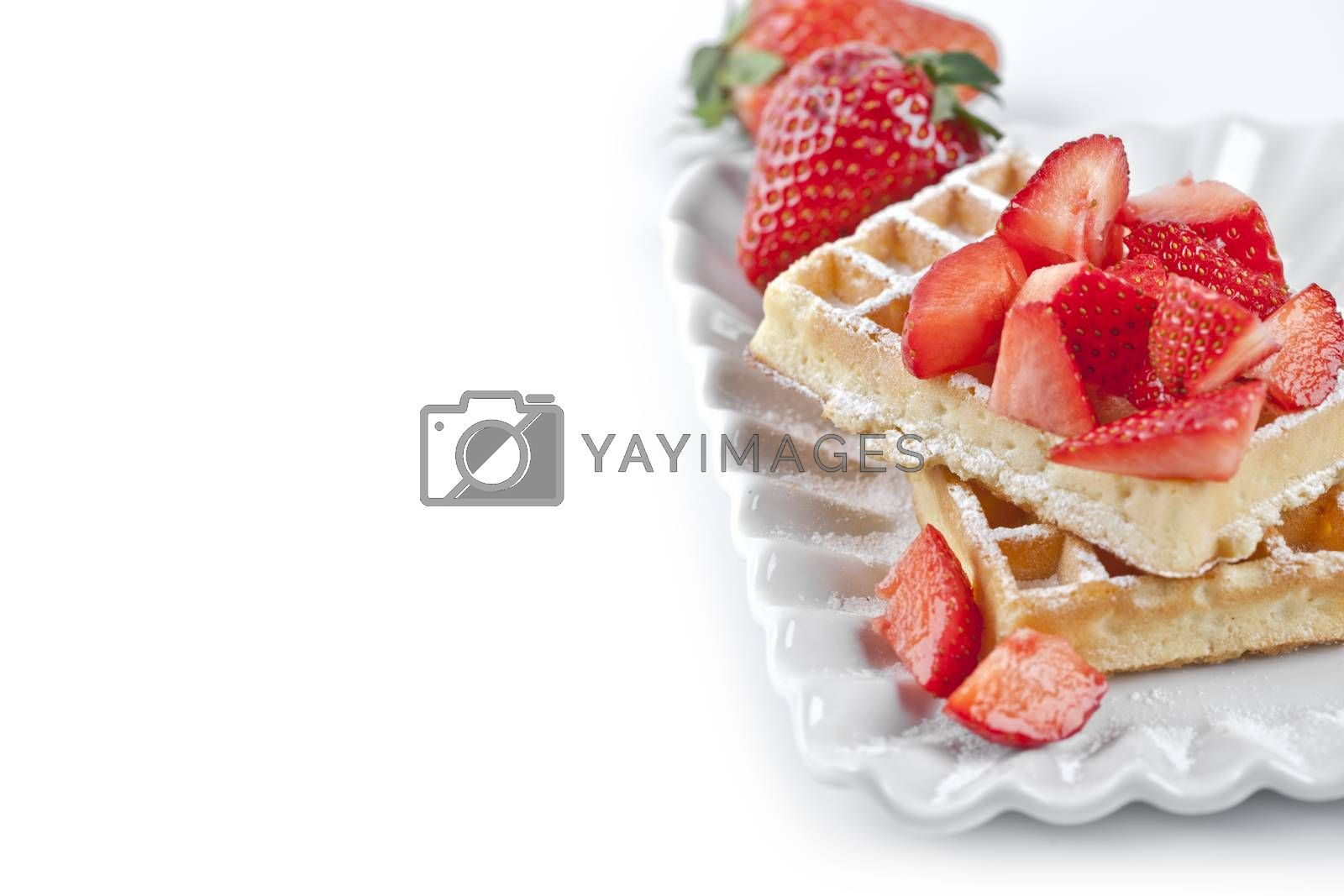 Belgium waffers with sugar powder and strawberries on ceramic plate on white table. Fresh baked wafers with copy space.