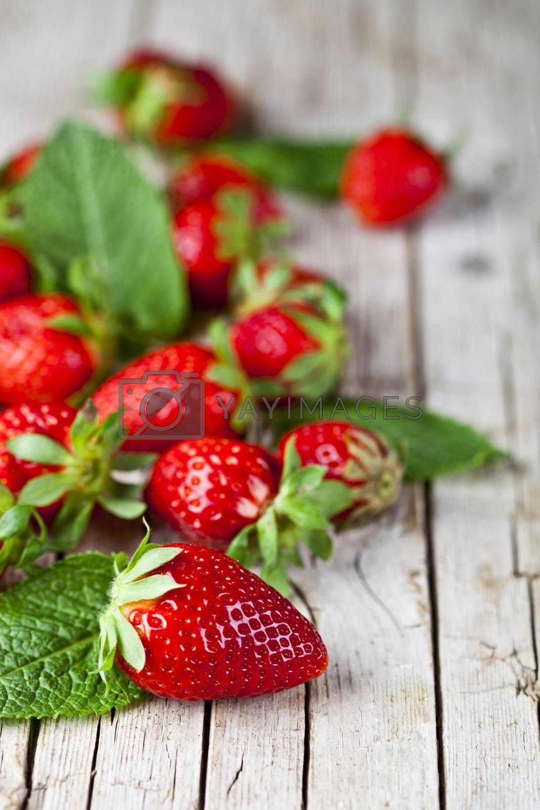 Fresh red strawberries and mint leaves on rustic wooden background. Healthy sweet food, vitamins and fruity concept.