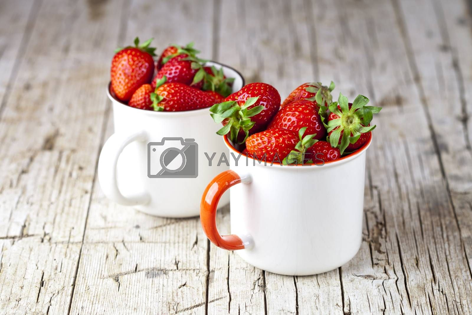 Organic red strawberries in two white ceramic cups on rustic woo by marylooo