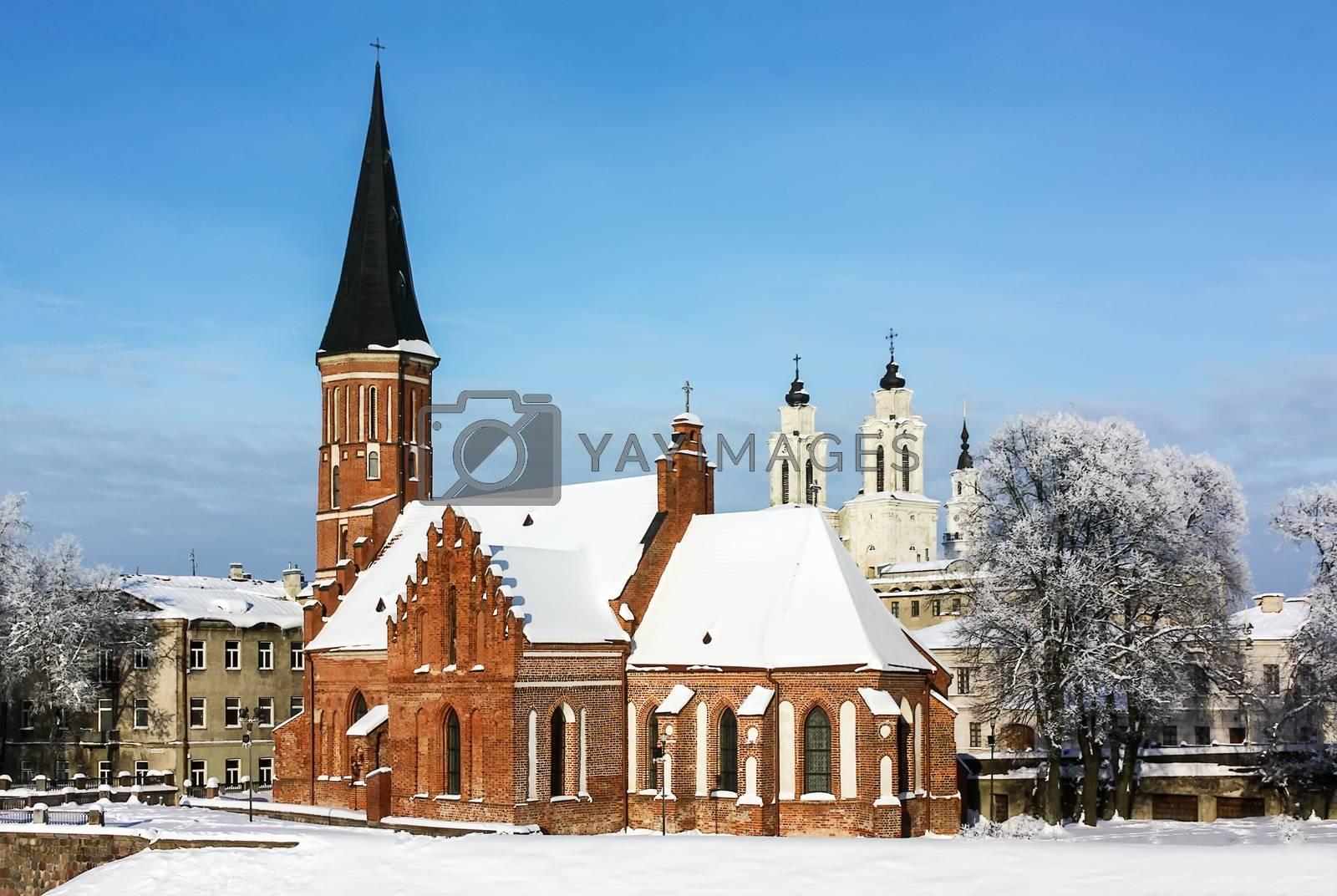 Vytautas the Great Church, Kaunas by borisb17