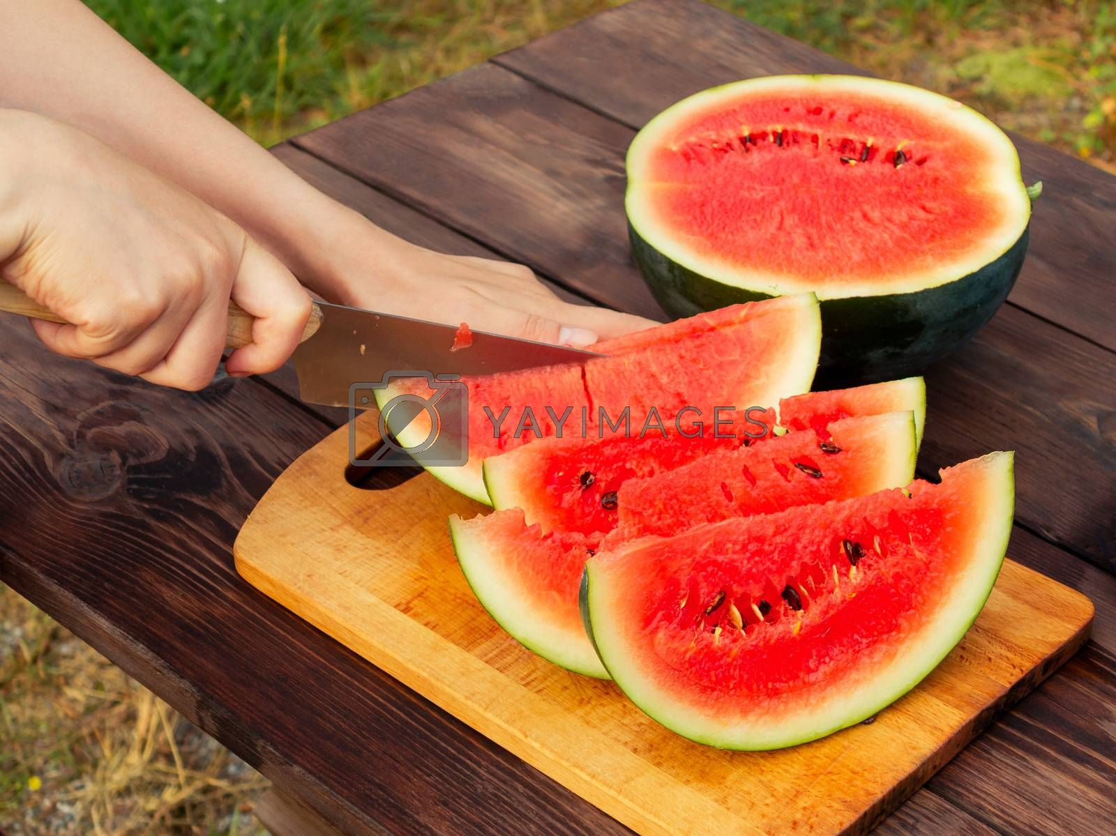 Women's hands cut with a knife into slices of ripe watermelon on a wooden table by galsand