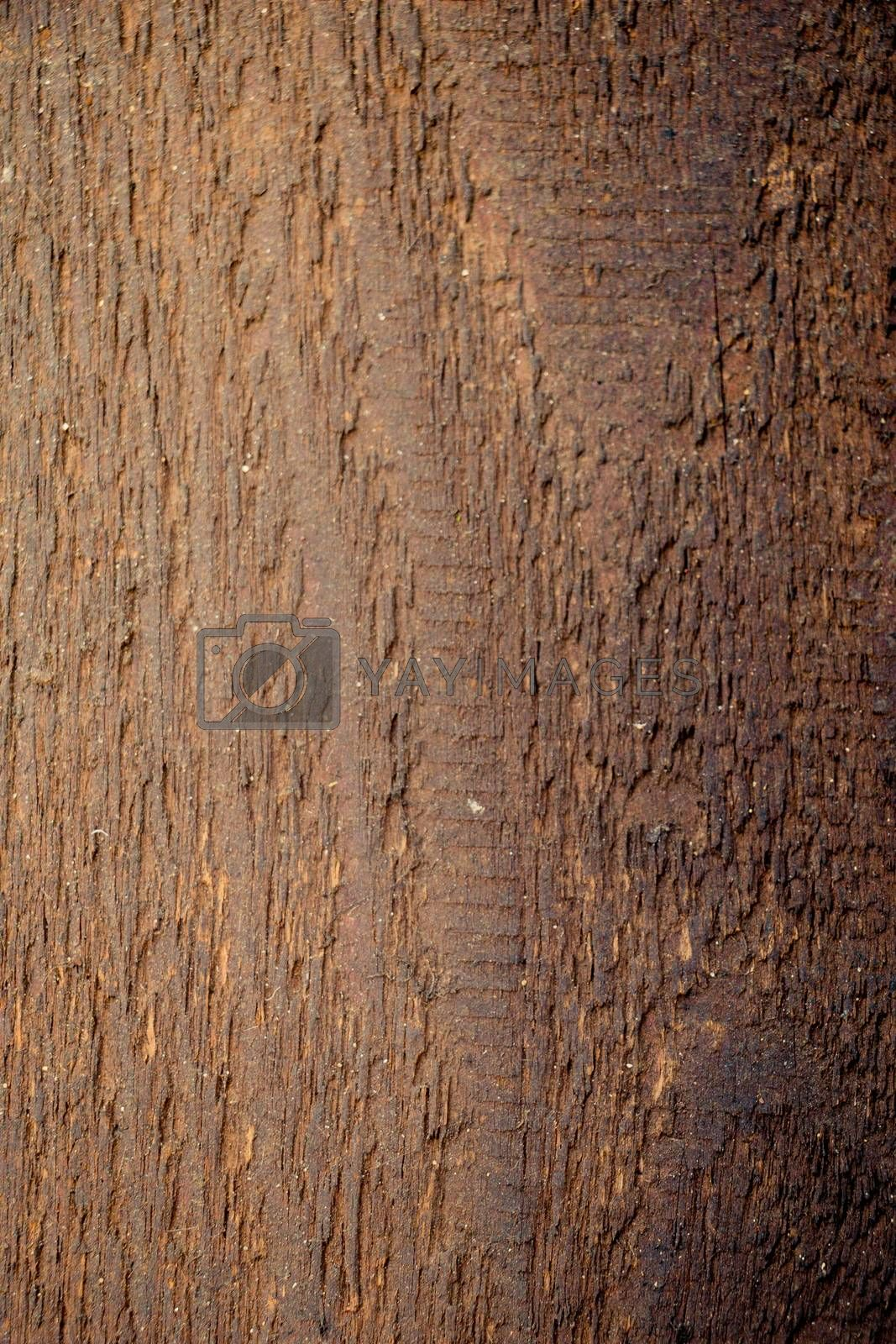 Wood texture with natural patterns by berkay