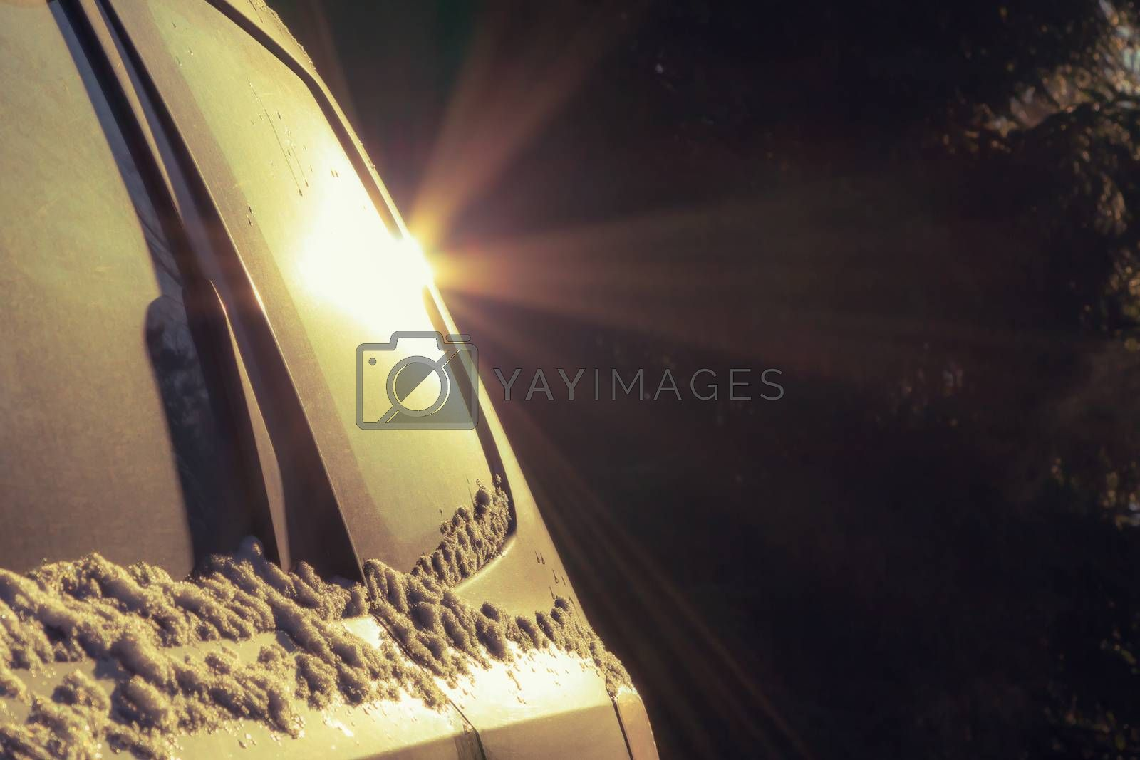 Rear side of the car with a glare in the dark by galsand