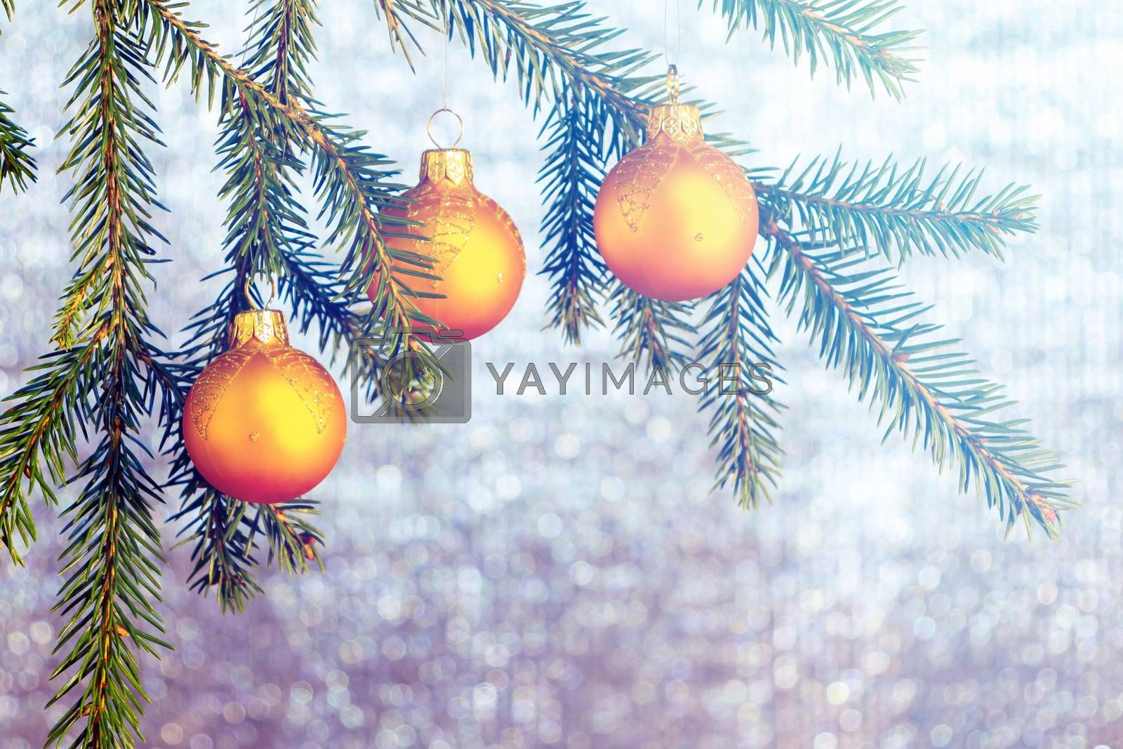 Orange Christmas ornaments on spruce branches on a shiny silver background. New Year's or Christmas background by galsand