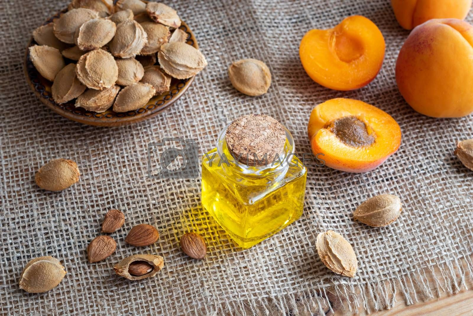 A bottle of apricot kernel oil with fresh fruit on a table