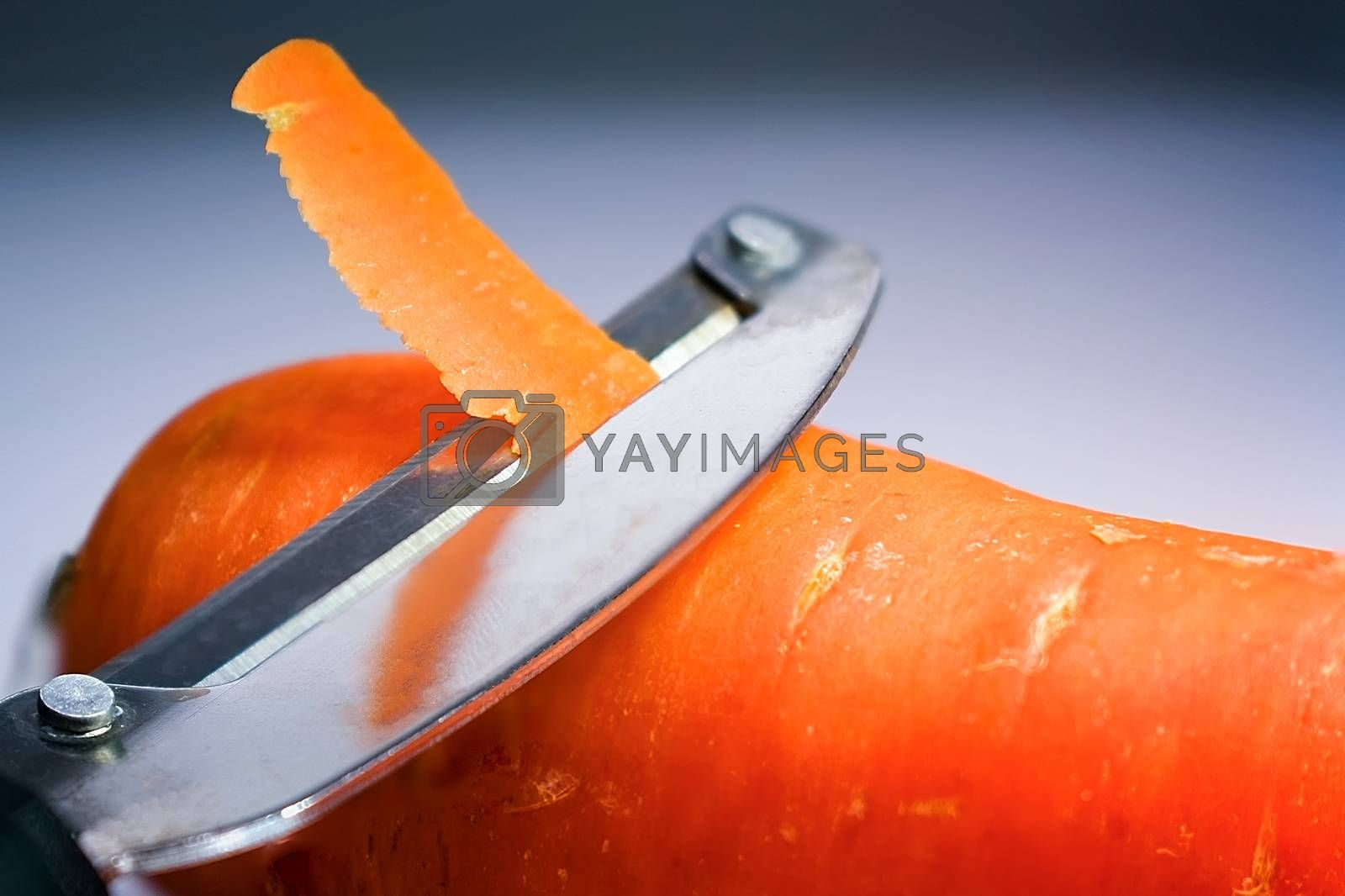 Peeler Peeling the Skin Off a Fresh Carrot