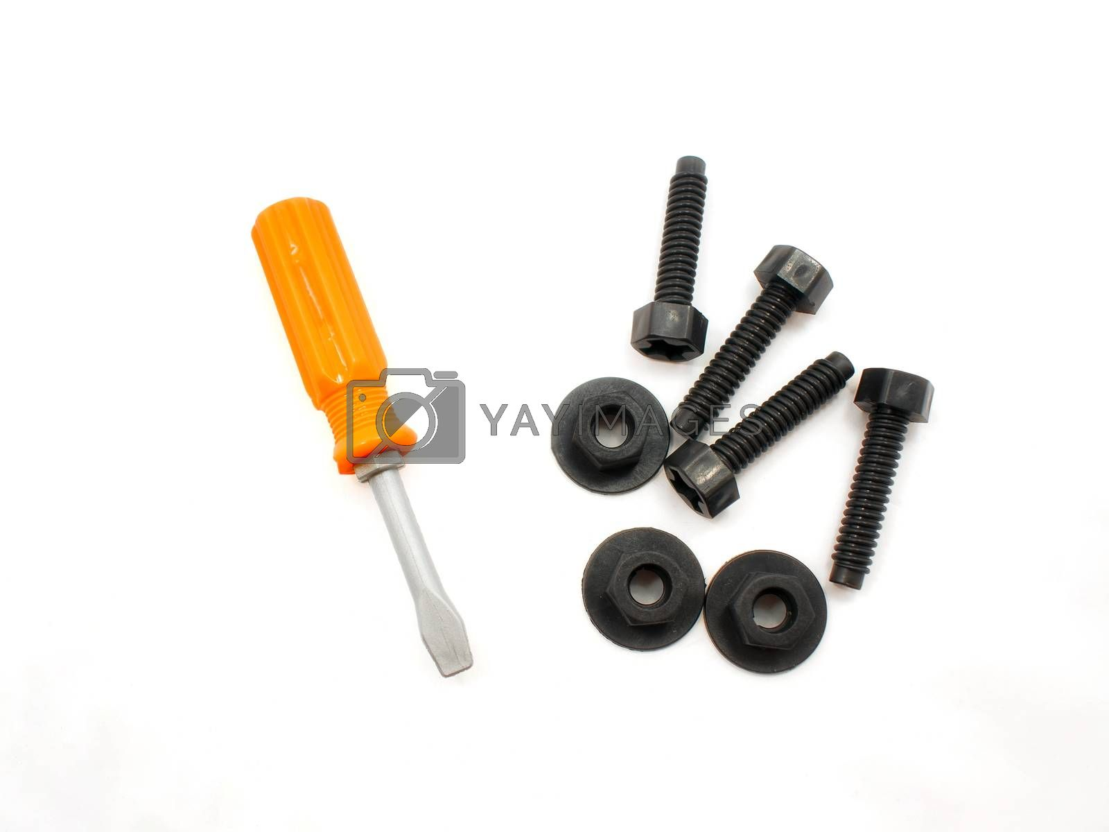 Set of Children's Screwdriver, Screws and Nuts