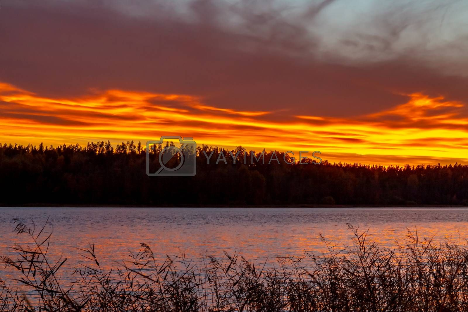 Beautiful sunset on the lake in the autumn evening - Image by galsand