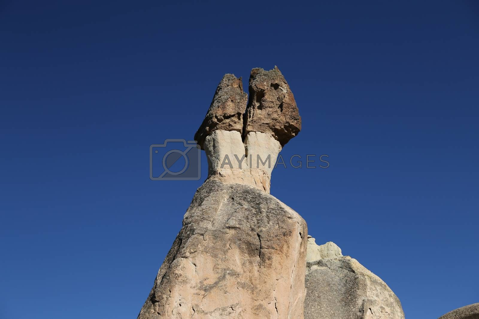 Rock Formations in Pasabag Monks Valley, Cappadocia, Nevsehir, T by EvrenKalinbacak