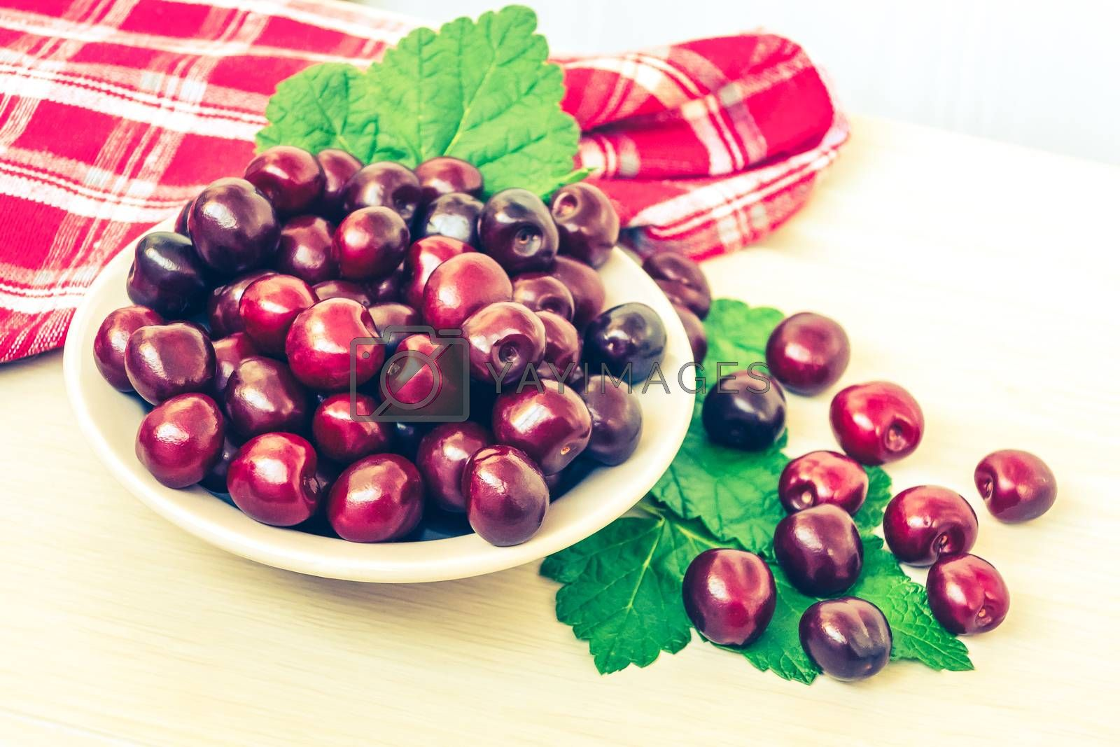 Fresh ripe sweet cherry in a plate on a light table by galsand
