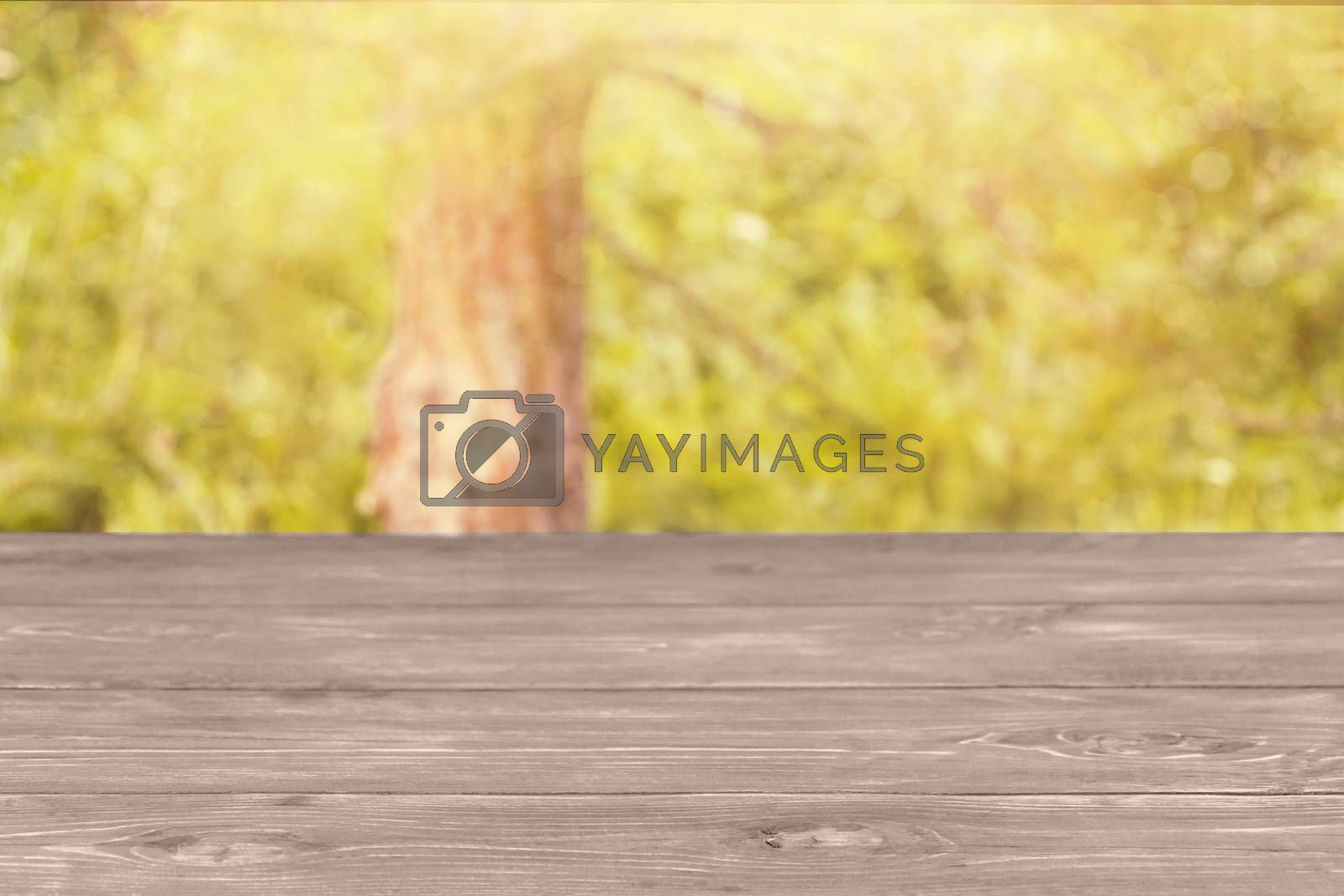 The surface of the wooden table and the blurred yellow-green background. Template mock up for display of product by galsand