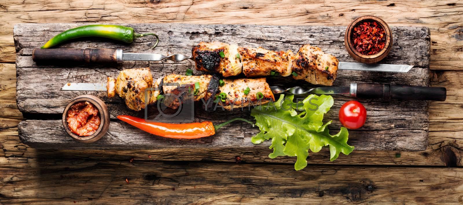 Kebab or shashlik by LMykola