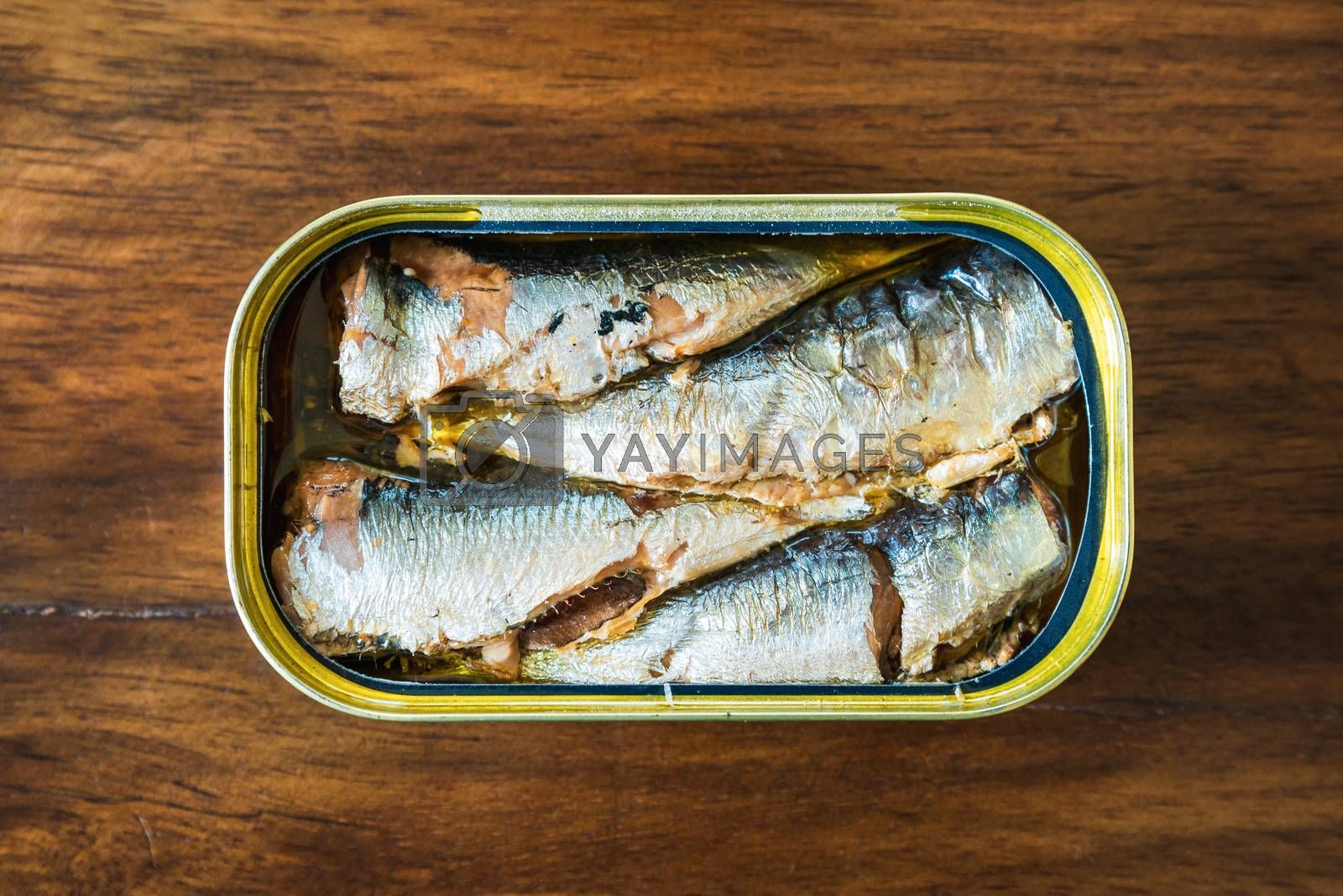 Canned sardines in olive oil on wood background