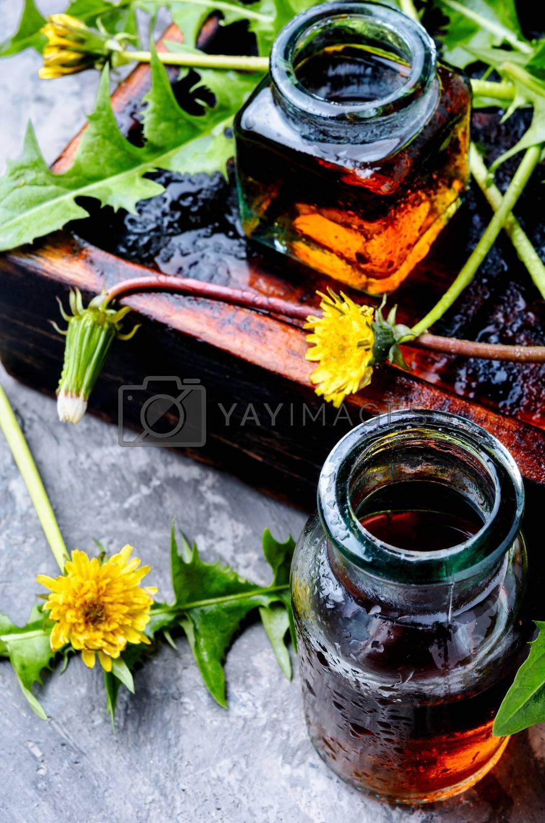 Dandelion tincture in bottle by LMykola
