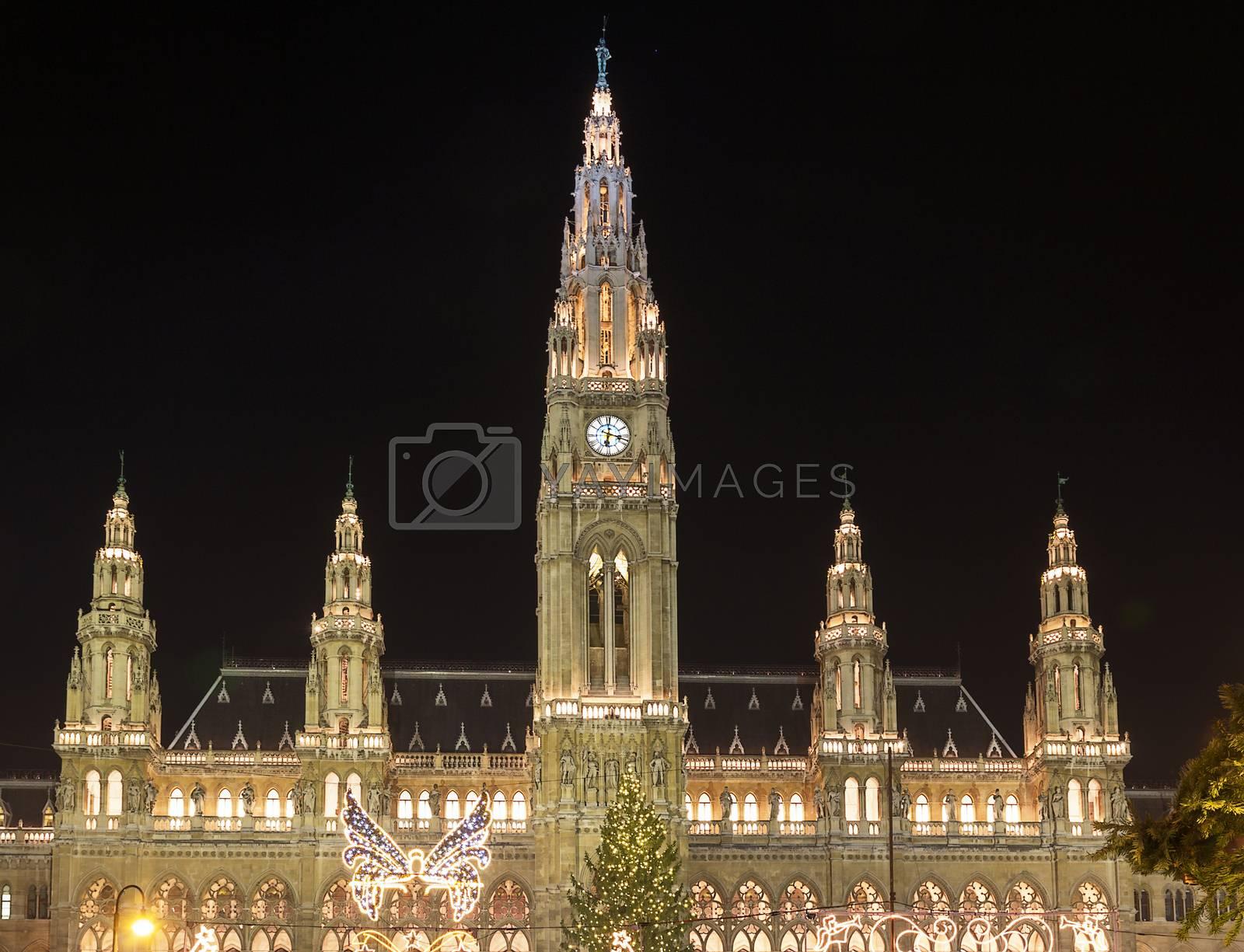 town hall of the Vienna, Austria by borisb17
