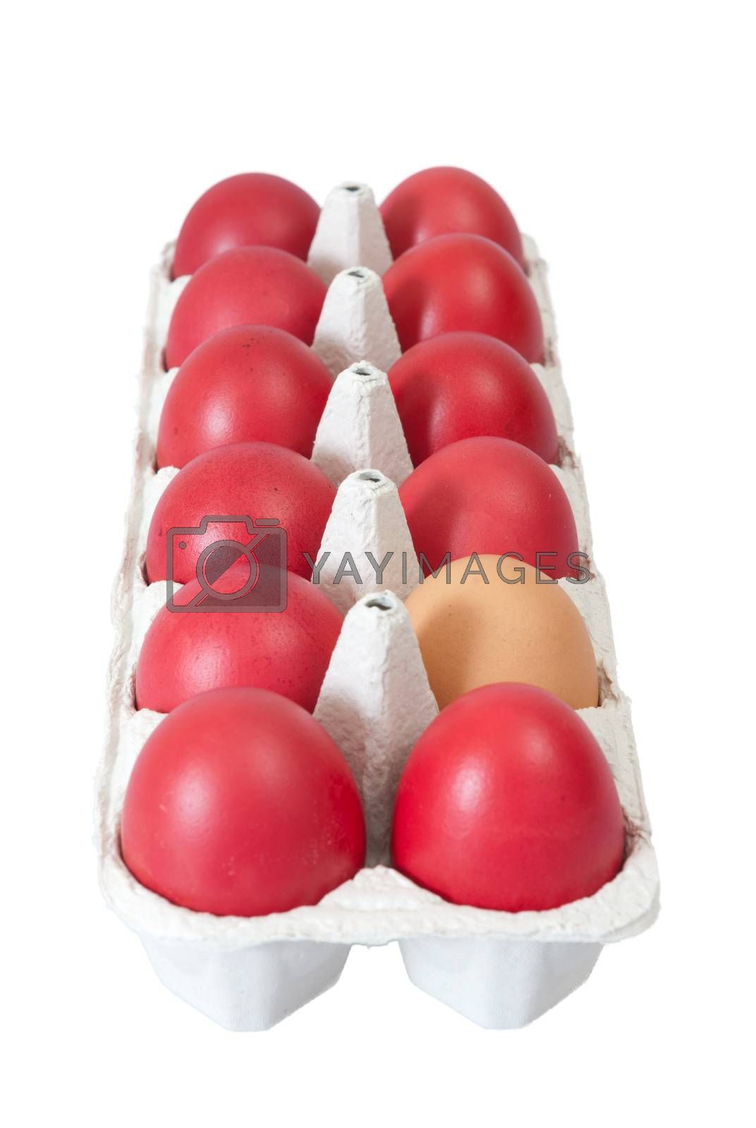 Colorful easter eggs in carton isolated on a white background.