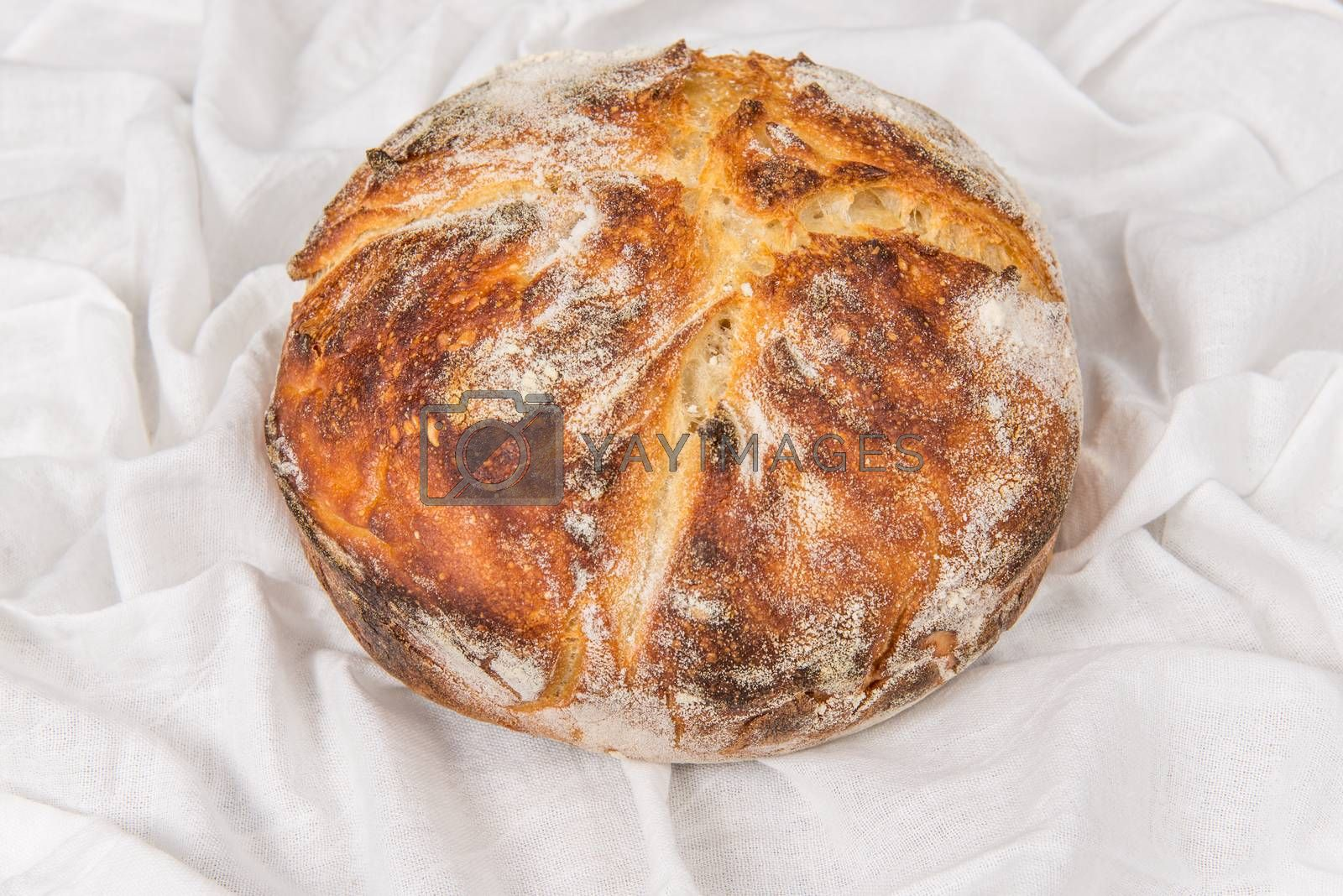 Fresh baked loaf of sour dough bread by Dan Totilca